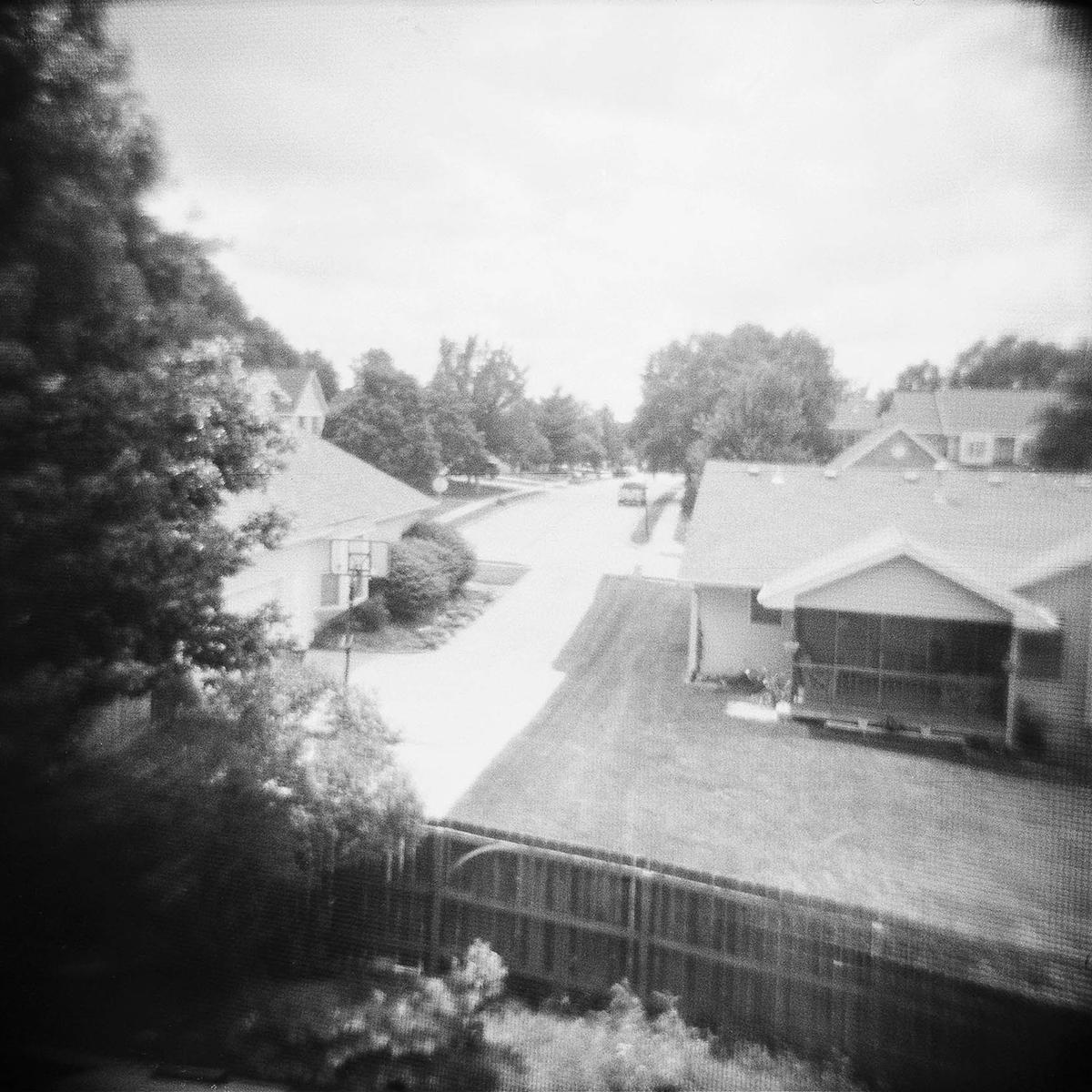 holga2014_backyard.png