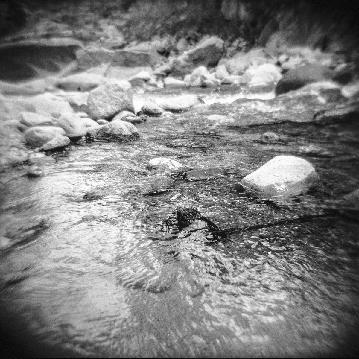 holga2014_colorado_2 copy.png