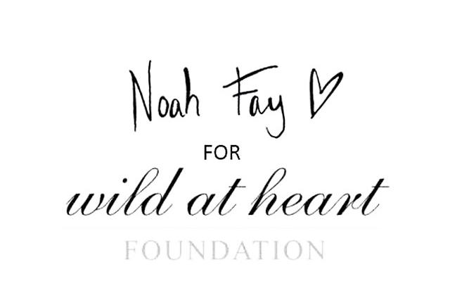 NOAH FAY