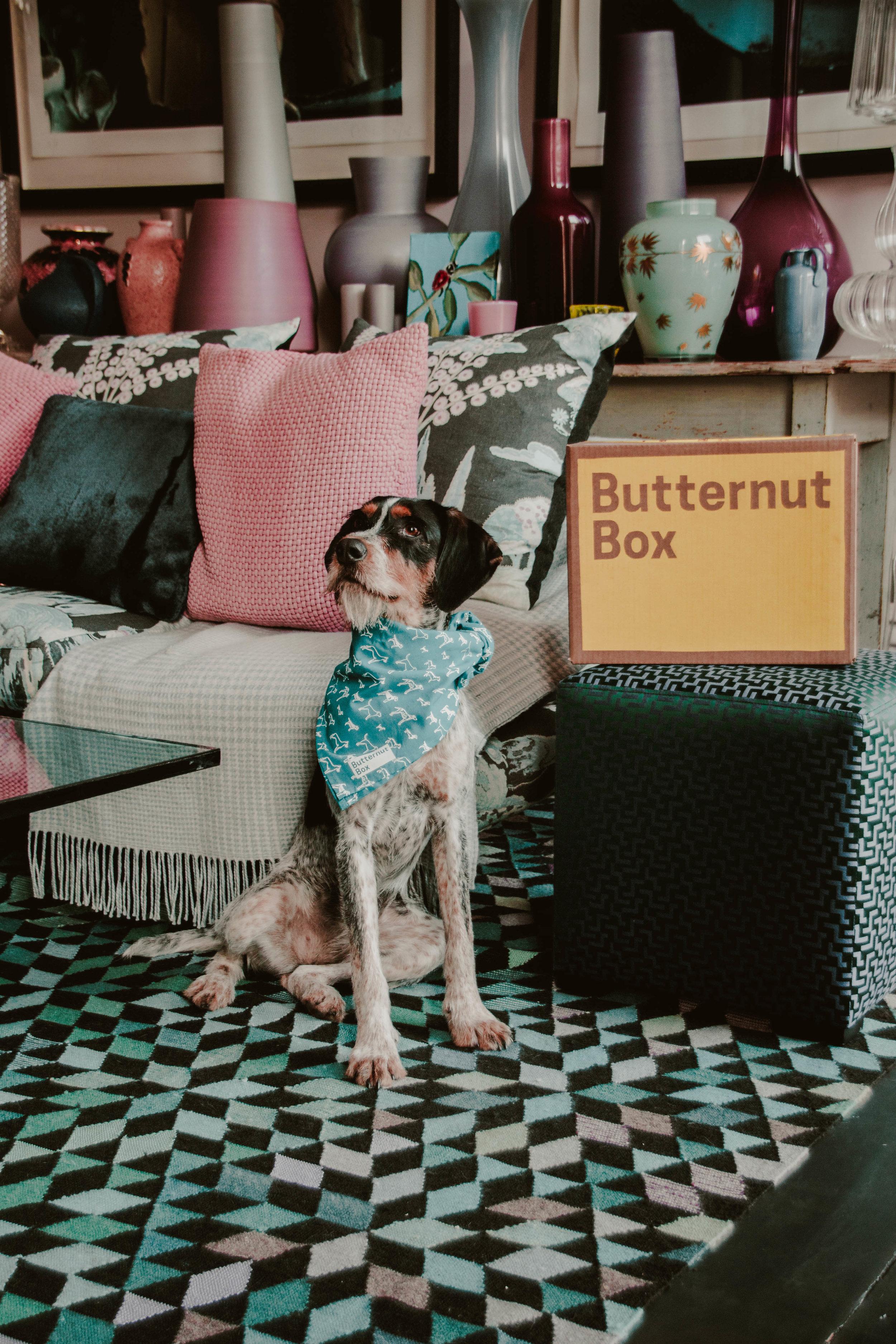 Butternut x Wild at Heart-3.jpg