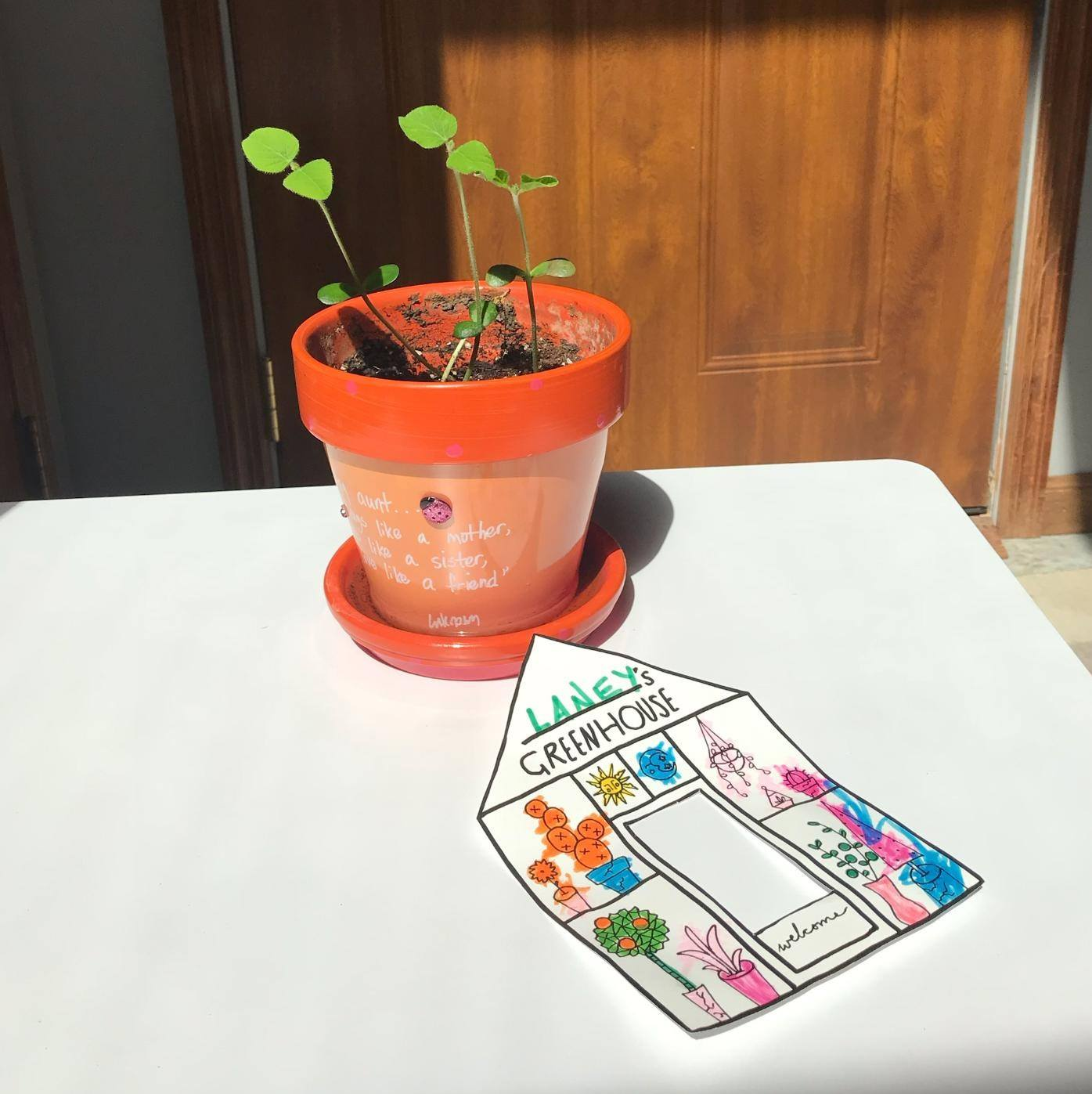 How to Grow a Bean (Printable!) #greenhouse #diy #passiveprogram #library #kids #craft #freeprintable #coloringpage #germination #gardening