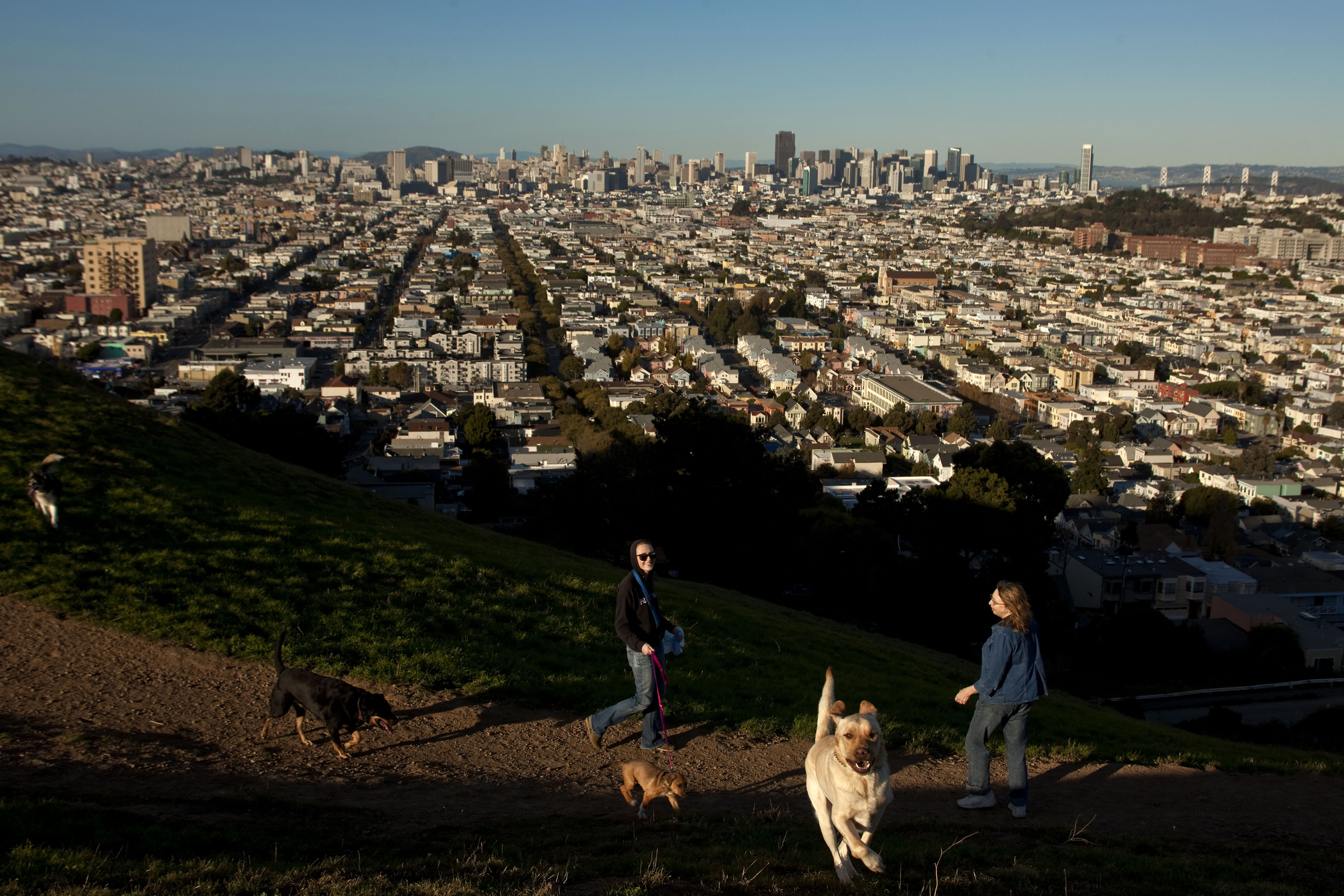 Bernal Hill - San Francisco, CA