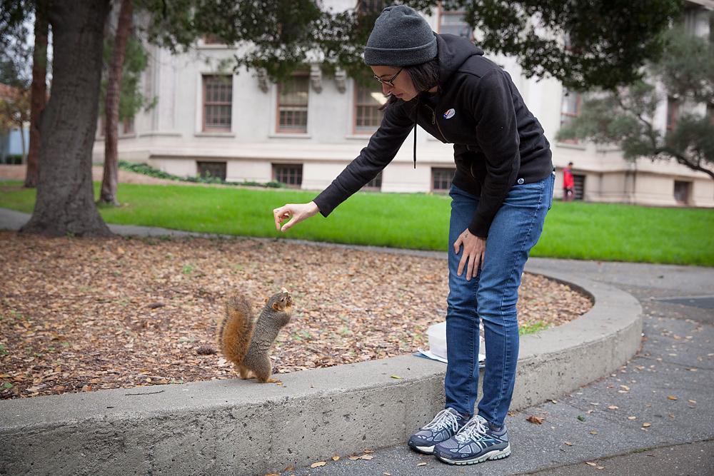 2491266_la-me-uc-berkeley-squirrels-dasilva_03.jpg