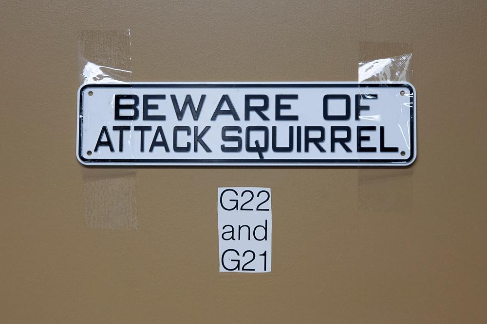 2491266_la-me-uc-berkeley-squirrels-dasilva_09.jpg