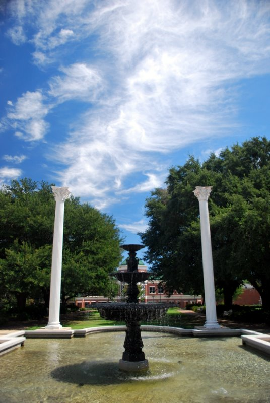 Gillespie Commons and The White Columns