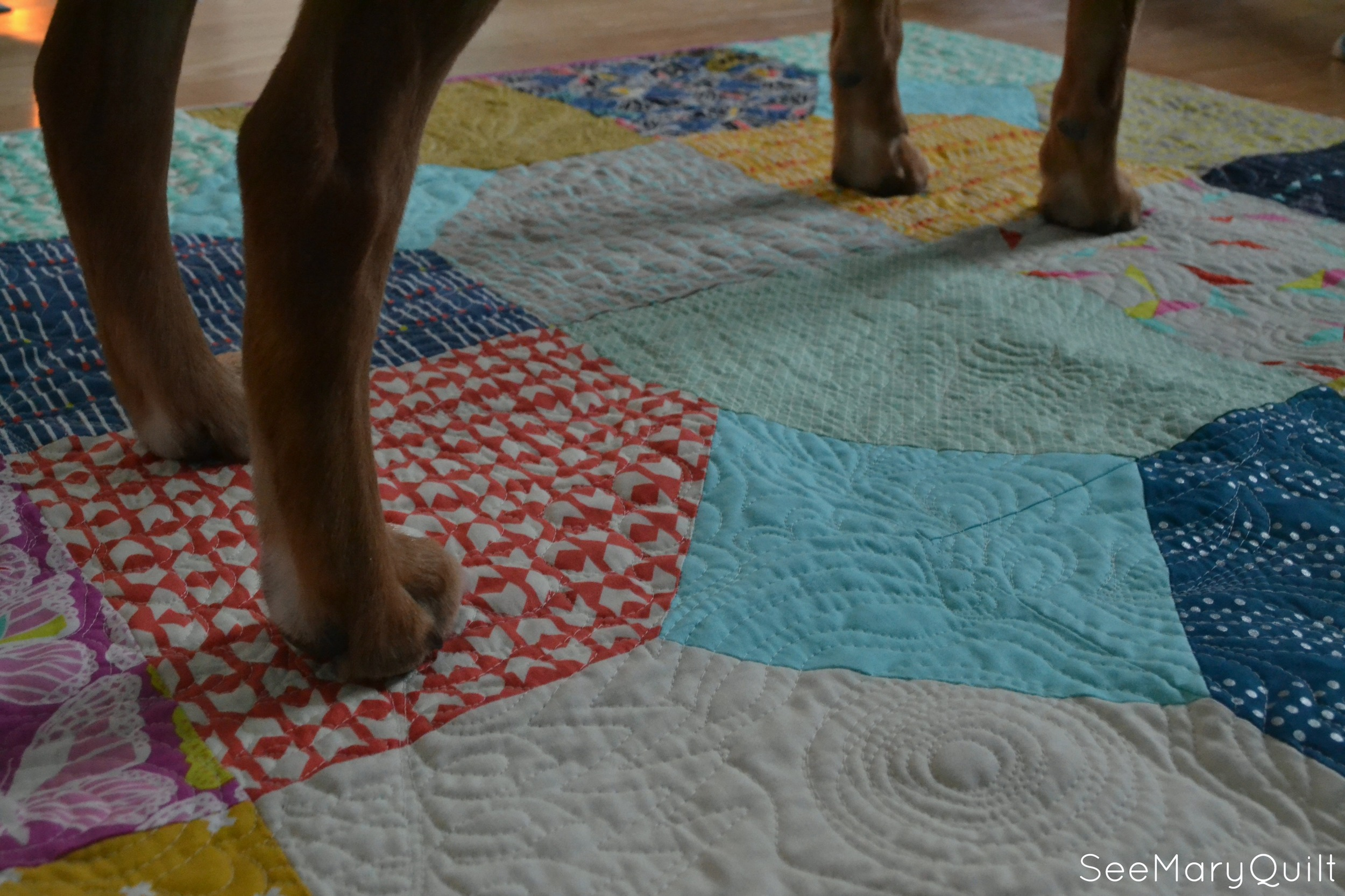 Layers of Charm Puppy legs Quilting texture.jpg