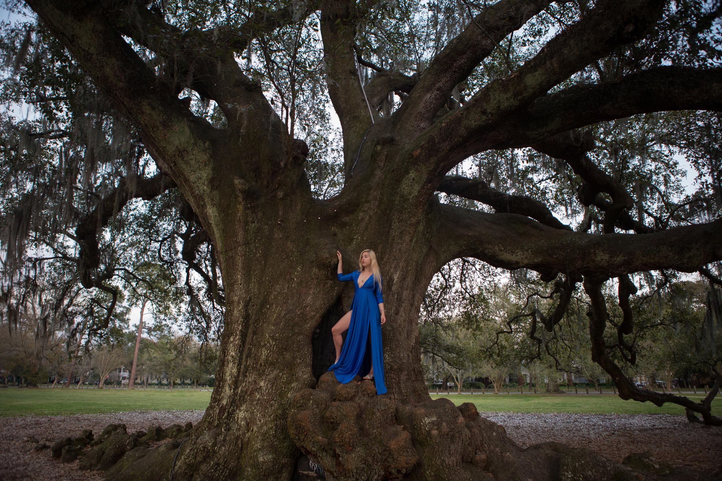 AstroBandit_JordanRose-TreeOfLife_NewOrleans_CobaltBlueDress_2.jpg