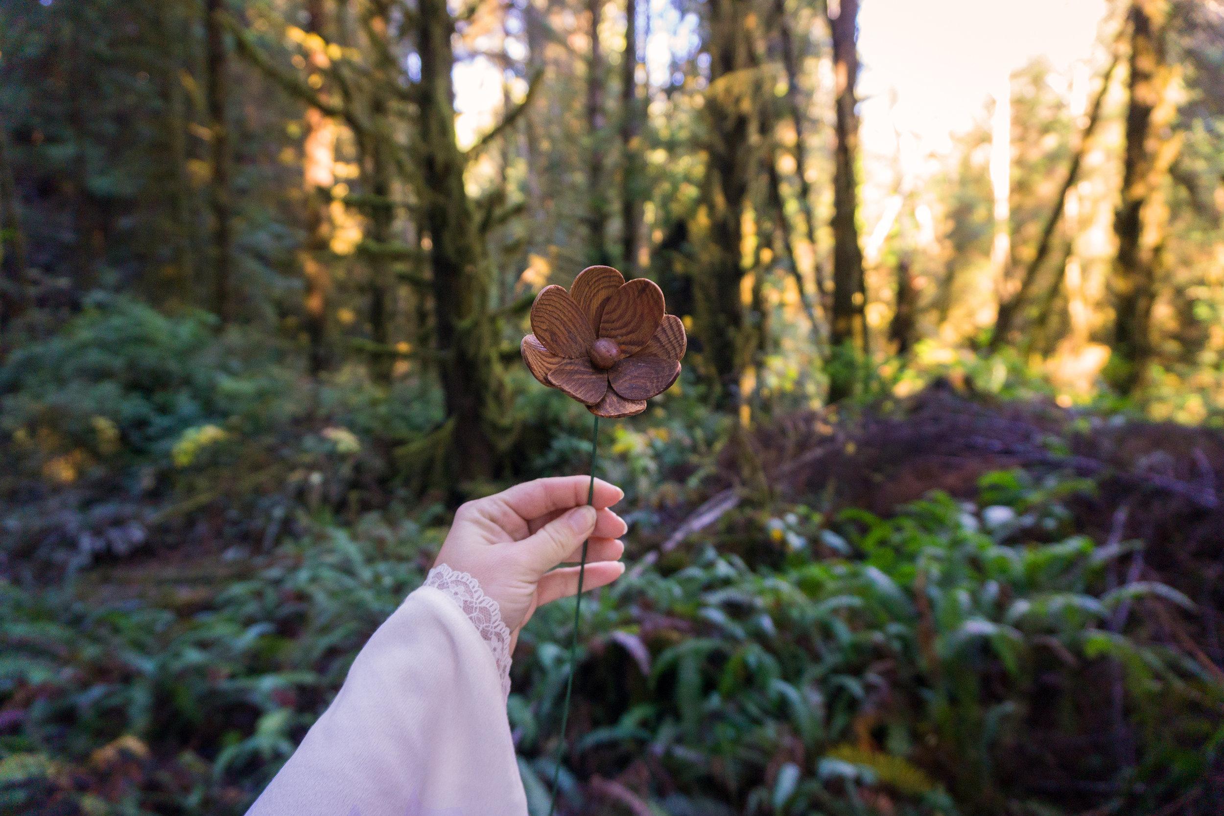 AstroBandit_ForLoveandLemons_Redwoods_PrairieCreek_WhiteDress_3.jpg