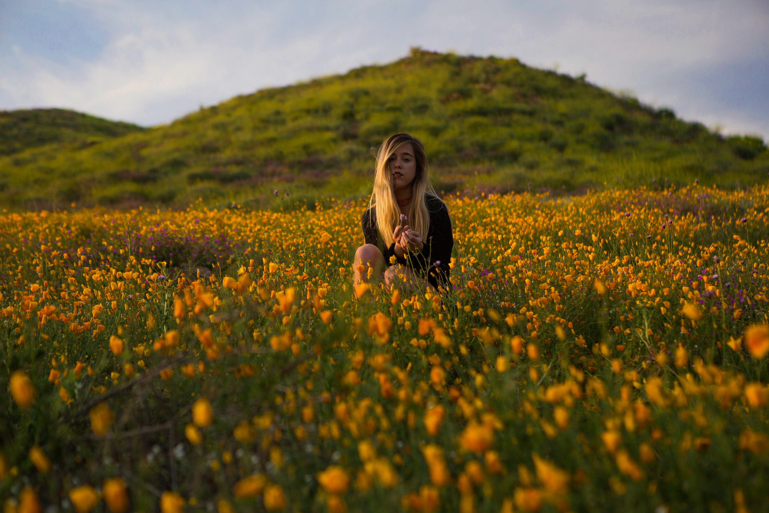 AstroBandit_Superbloom_CaliforniaPoppies_LackOfColor_10.jpg