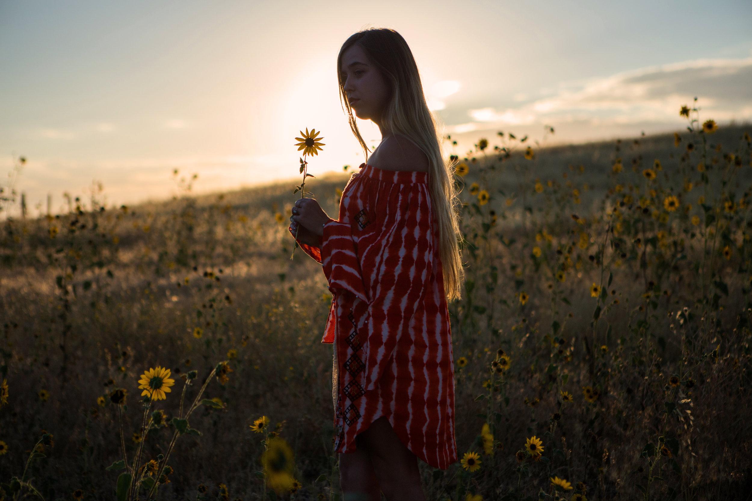 astrobandit_hemantandnandita_sunflowers_8.jpg