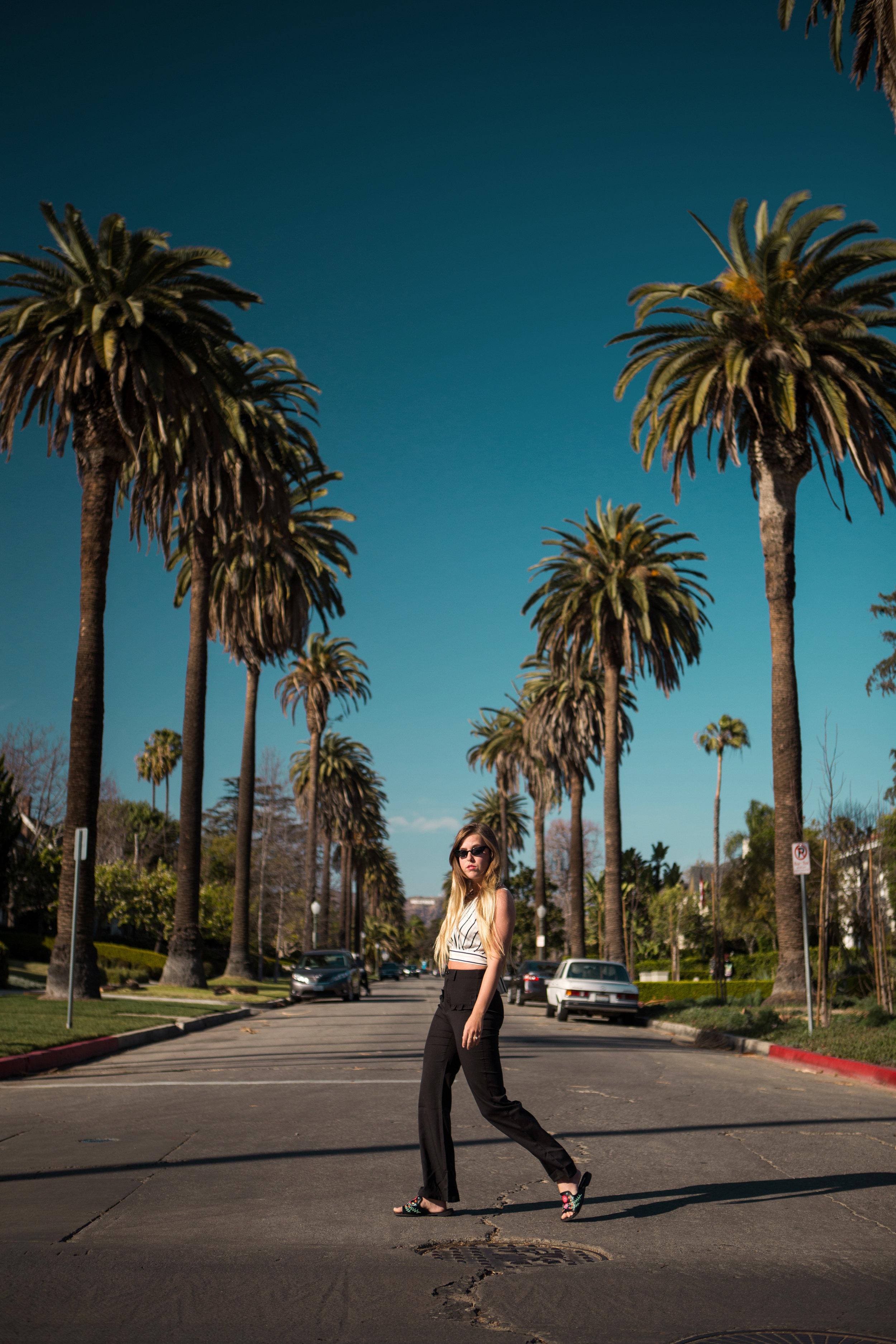 AstroBandit_Iconic_Palm_Tree_Lined_Street_Los_Angeles_Holywood_Sign_3.jpg