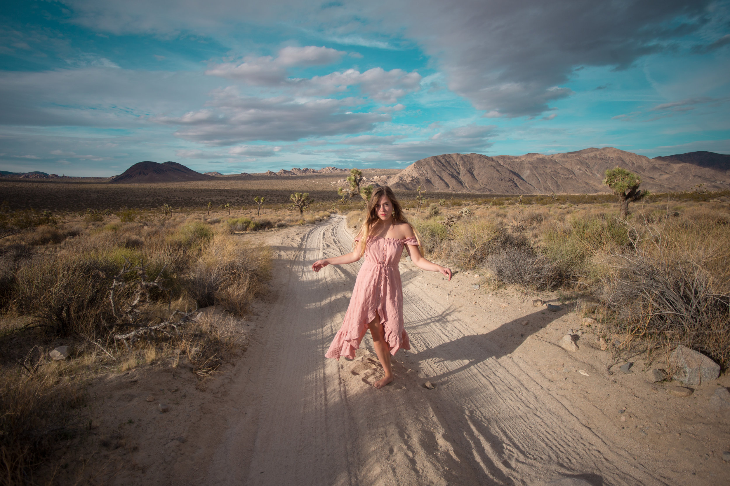 AstroBandit_JordanRose_Auguste_The_Label_LightPink_Spring_2018_Fashion_Maxi_Dress_Joshua_Tree_Storm_2.jpg