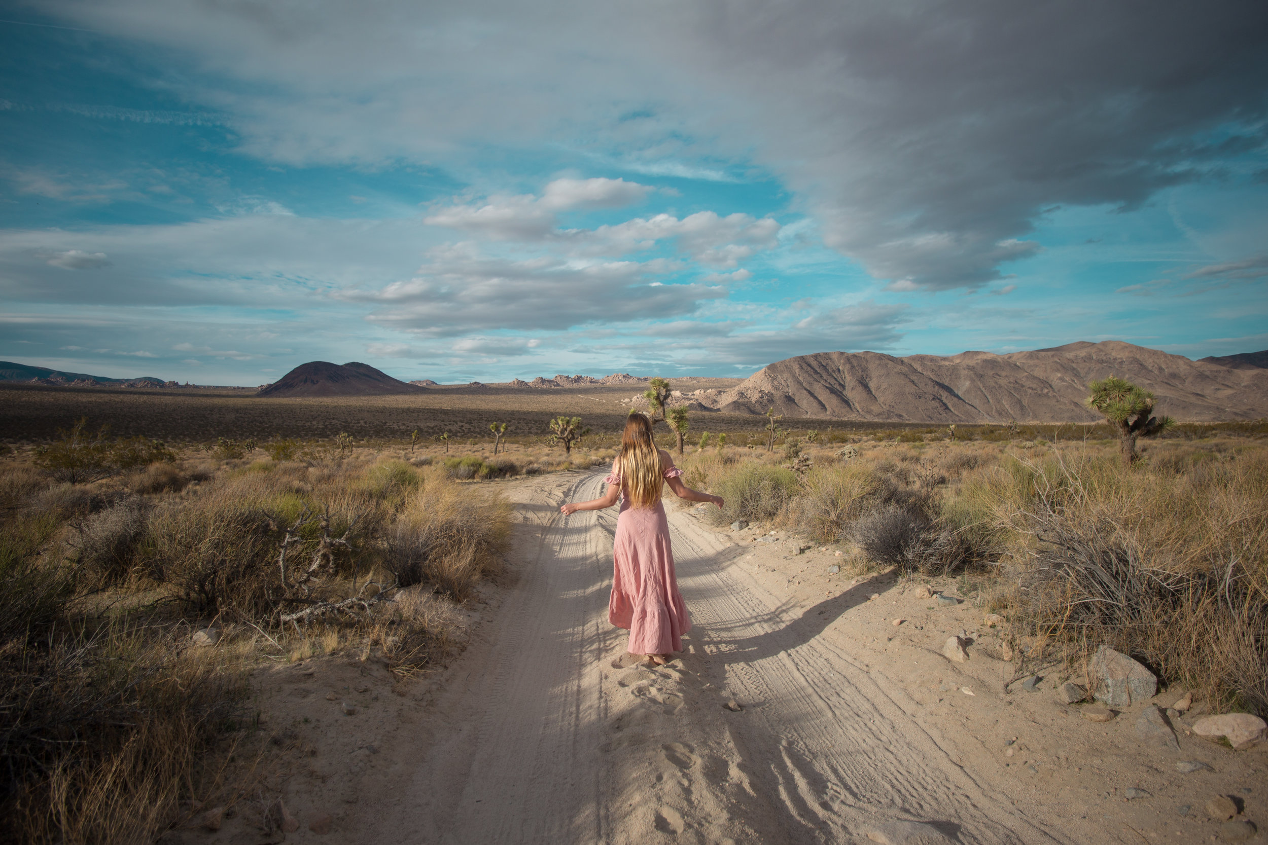 AstroBandit_JordanRose_Auguste_The_Label_LightPink_Spring_2018_Fashion_Maxi_Dress_Joshua_Tree_Storm_5.jpg