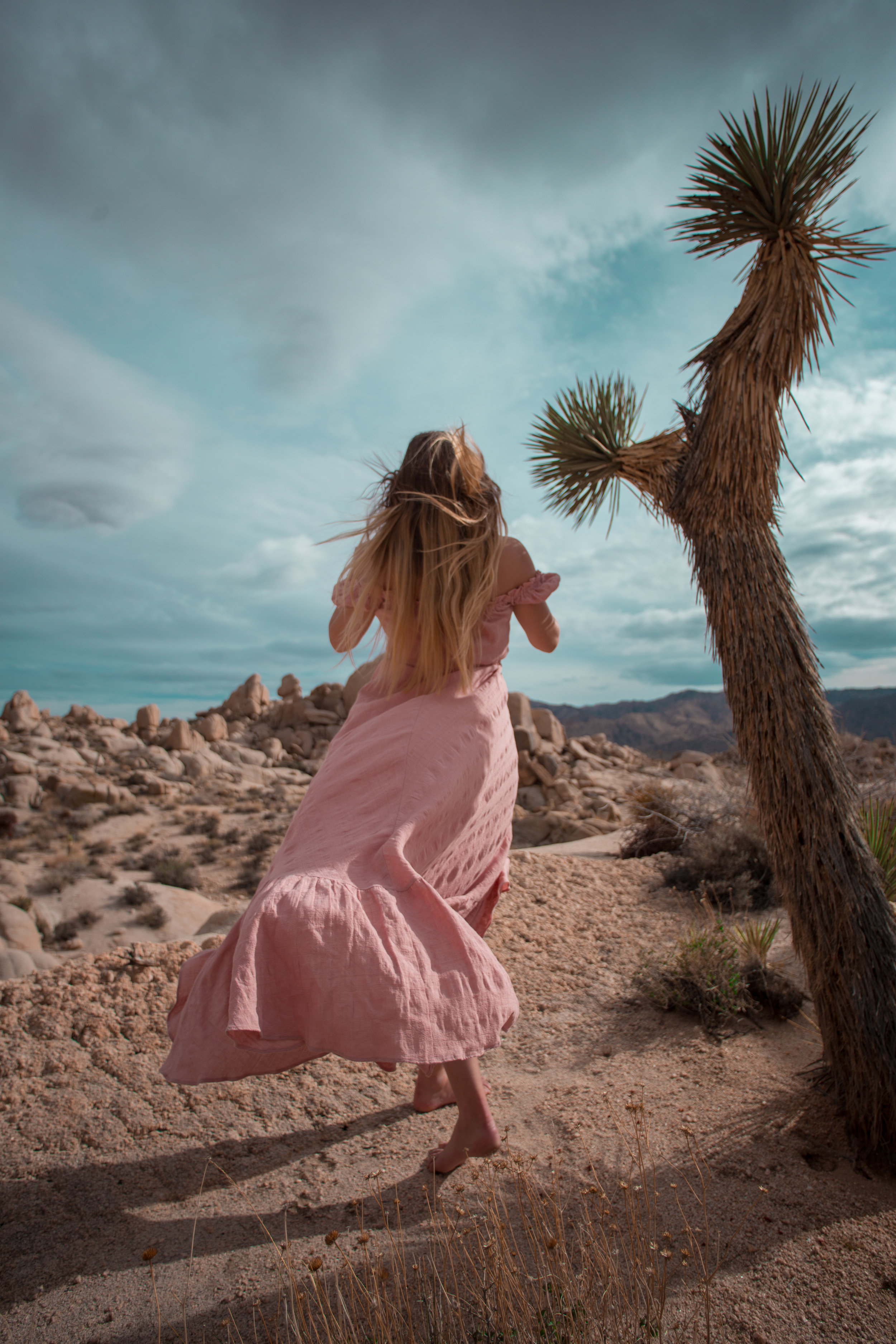 AstroBandit_JordanRose_Auguste_The_Label_LightPink_Spring_2018_Fashion_Maxi_Dress_Joshua_Tree_Storm_3.jpg