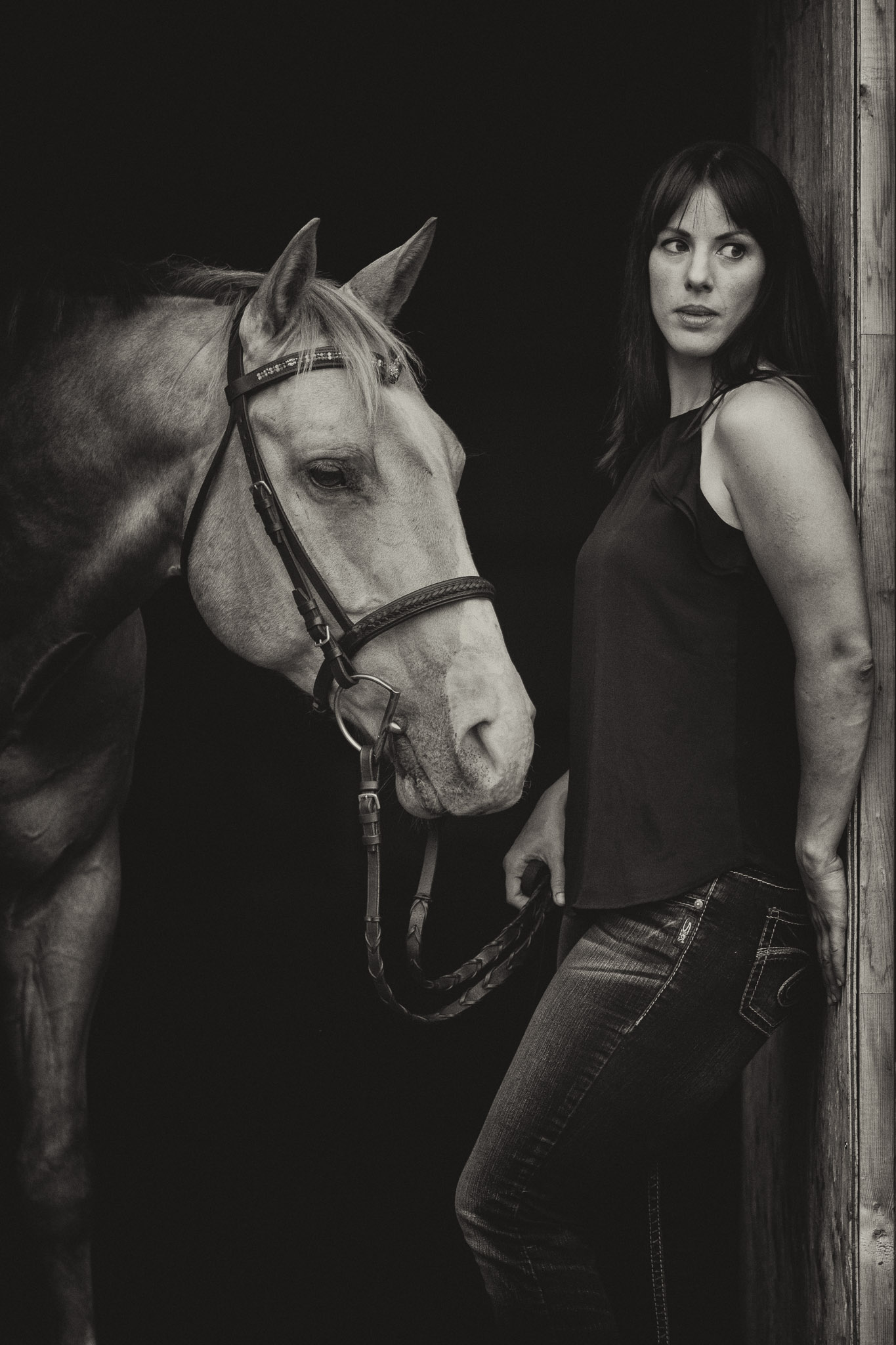 Human and horse model
