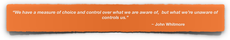 Women in Leadership | Anneli Blundell | Quote 1 .png