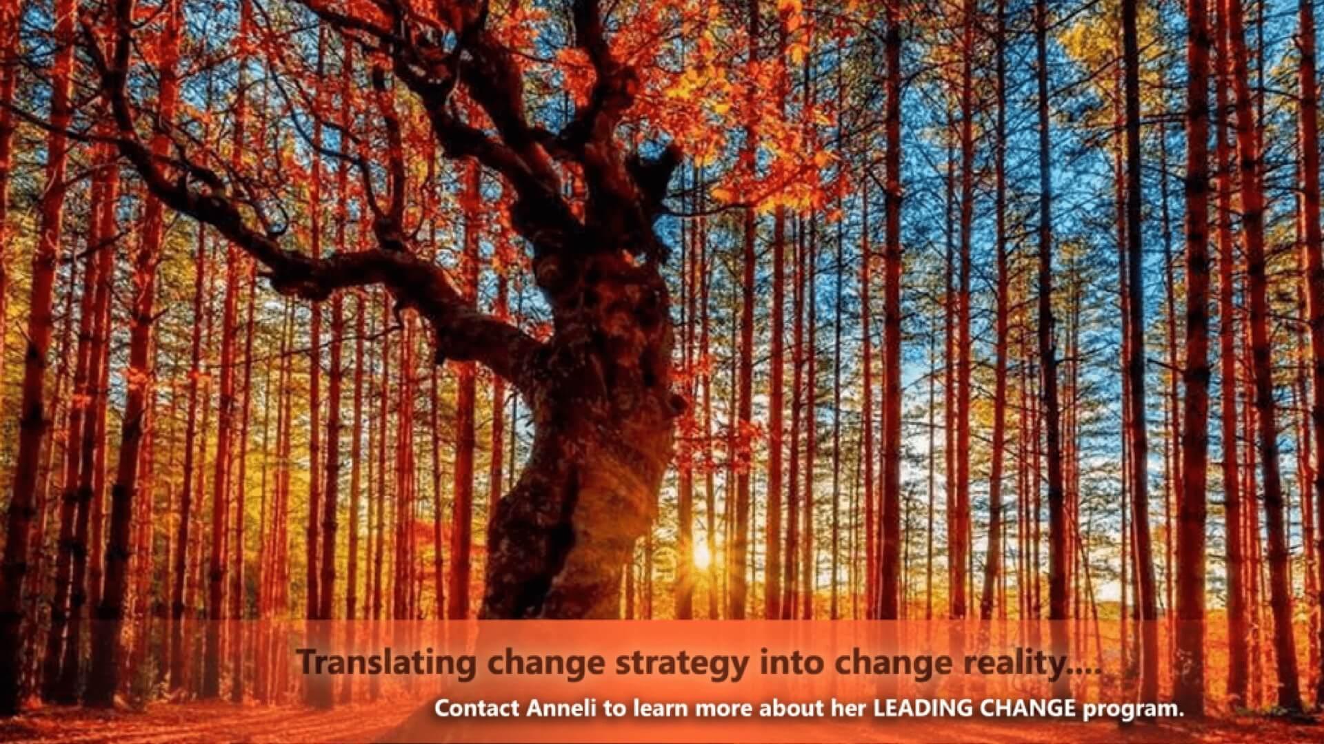 Anneli Blundell | Leading Change.jpeg