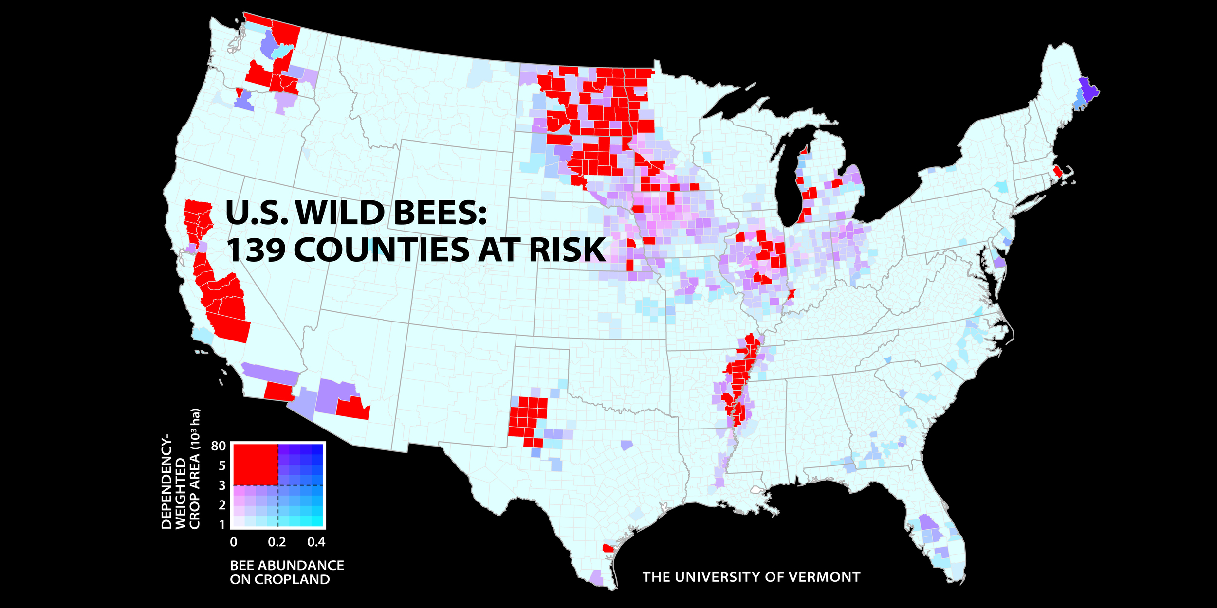A new study of wild bees identifies 139 counties in key agricultural regions of California, the Pacific Northwest, the upper Midwest and Great Plains, west Texas, and the southern Mississippi River valley that have the most worrisome mismatch between falling wild bee supply and rising crop pollination demand. The study and map were published in the Proceedings of the National Academy of Sciences, and led by scientists at the University of Vermont.