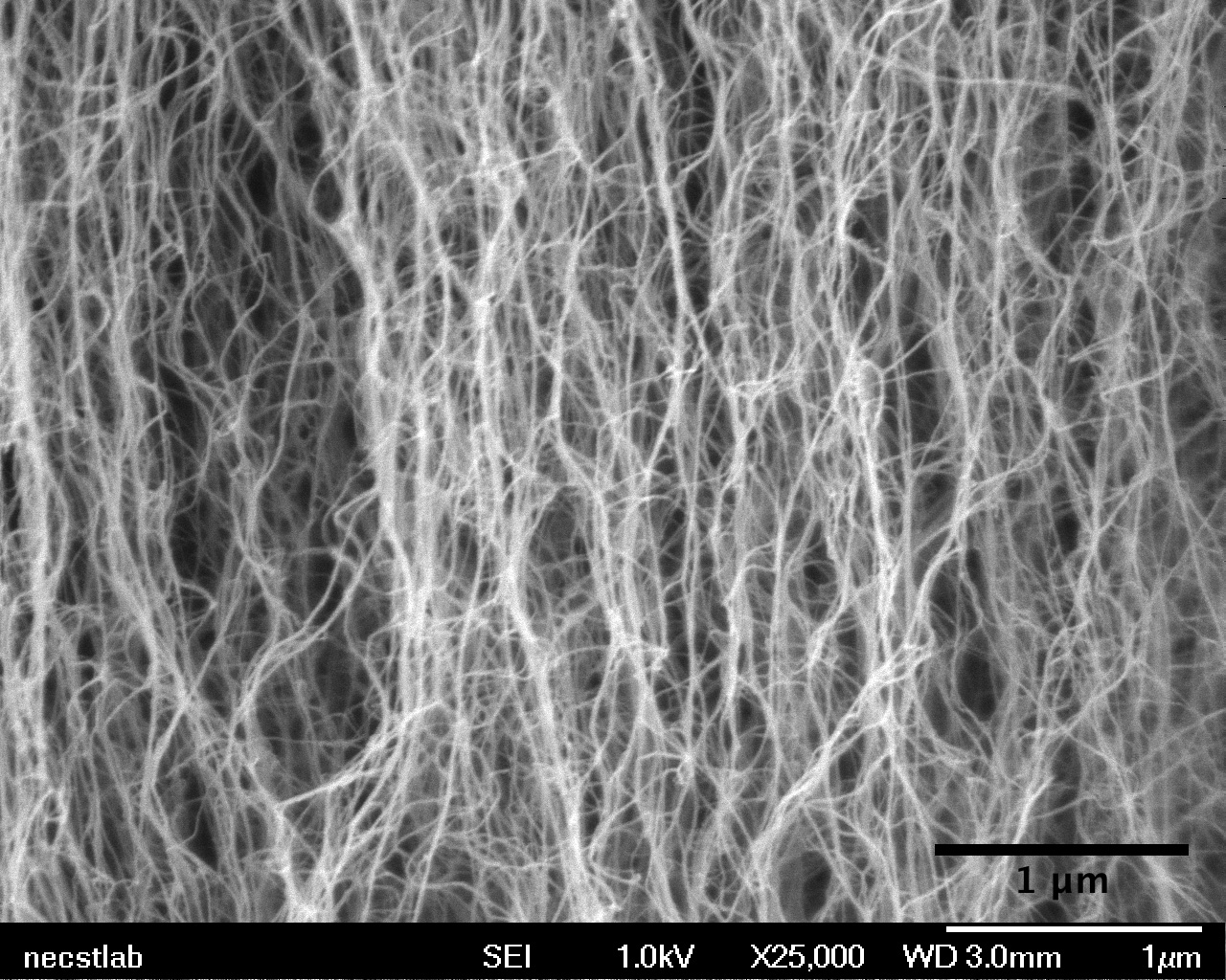 A zoomed in view of carbon nanotubes, showing individual tubes - Image Credits: MIT