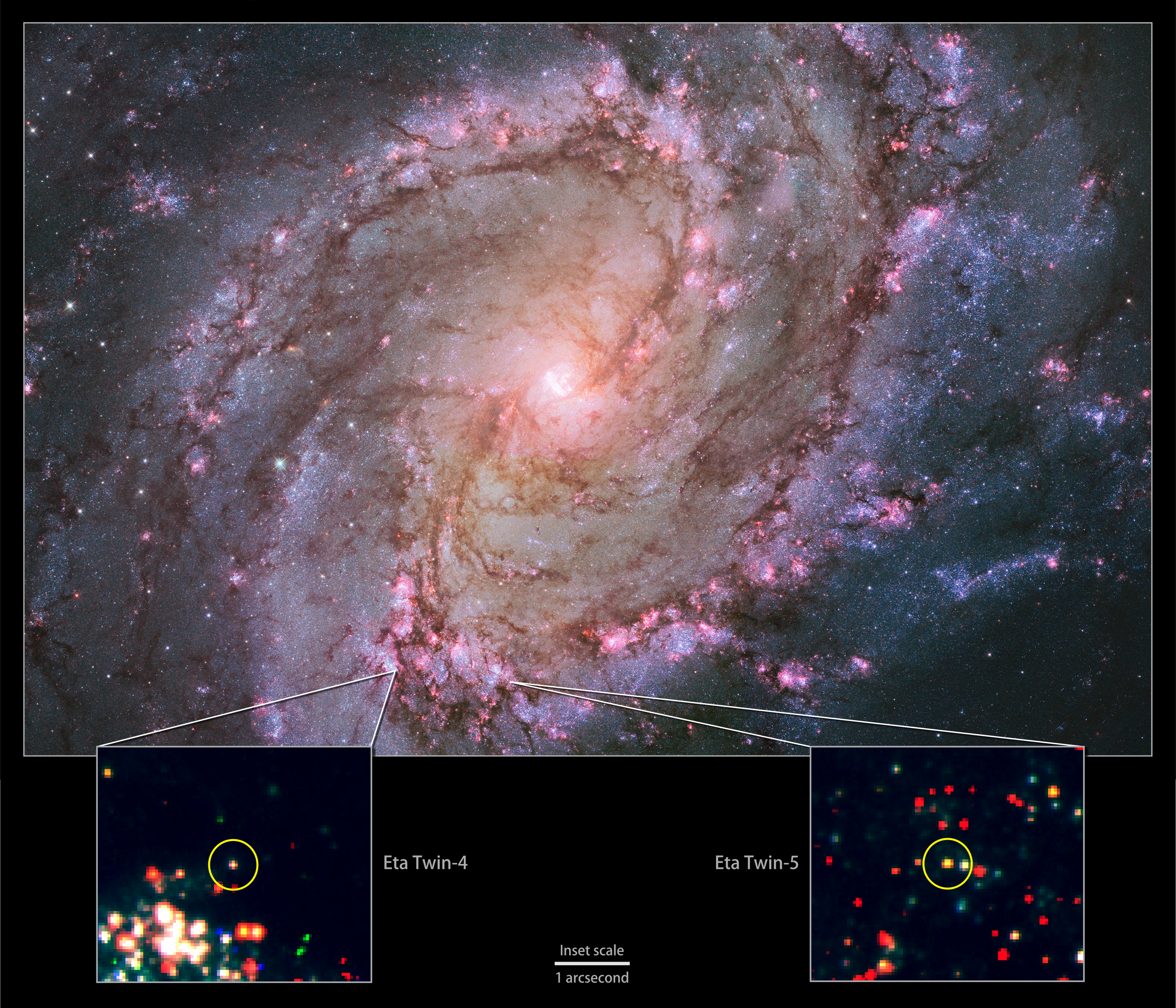 The nearby spiral galaxy M83 is currently the only one known to host two potential Eta Carinae twins. This composite of images from the Hubble Space Telescope's Wide Field Camera 3 instrument shows a galaxy ablaze with newly formed stars. A high rate of star formation increases the chances of finding massive stars that have recently undergone an Eta Carinae-like outburst. Bottom: Insets zoom into Hubble data to show the locations of M83's Eta twins. - Image Credits: NASA, ESA, the Hubble Heritage Team (STScI/AURA) and R. Khan (GSFC and ORAU)