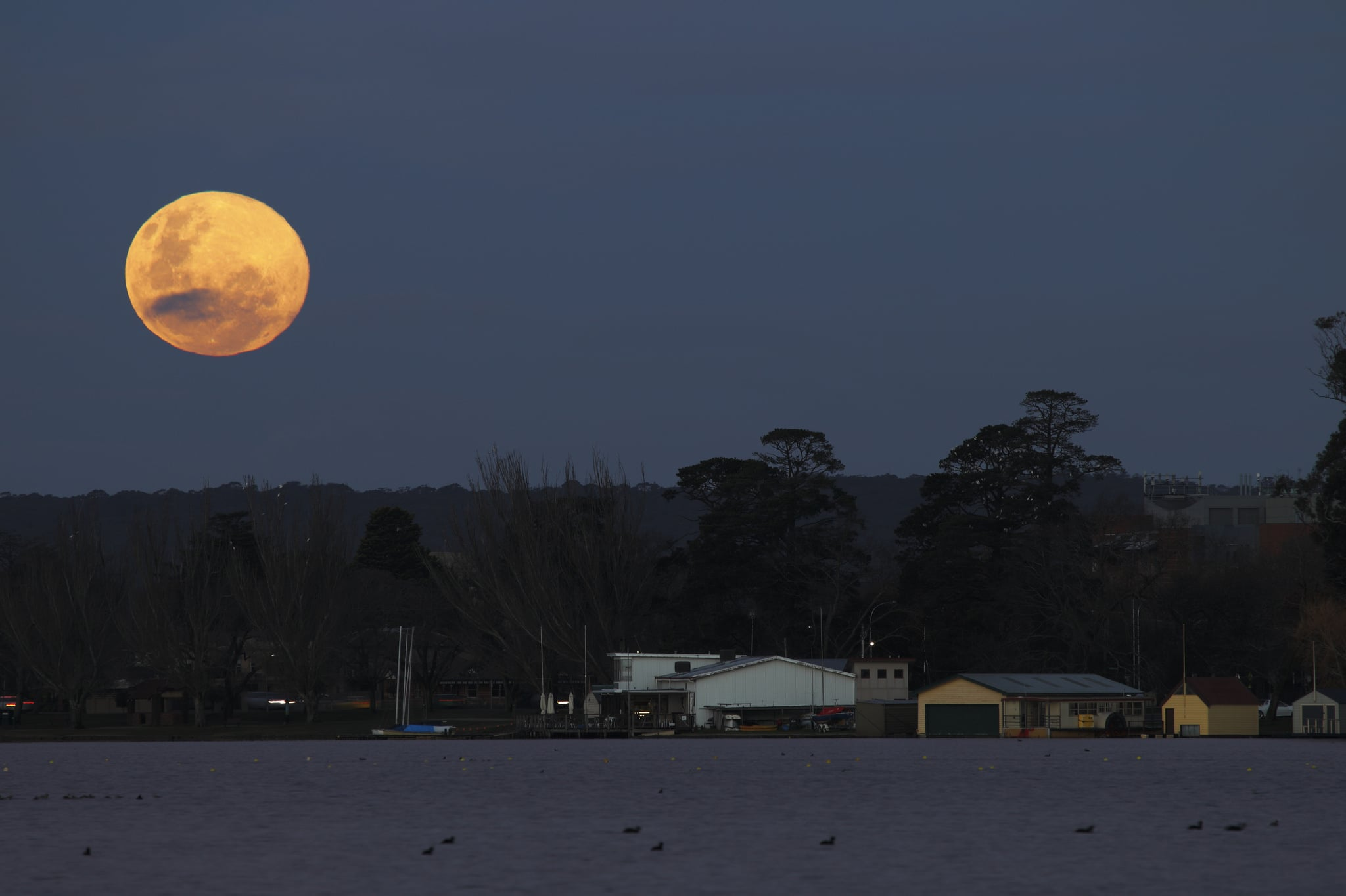 Don't expect the blue moon to be coloured blu - Image Credit:  Ed Dunens/Flickr
