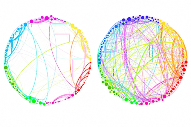 """This diagram demonstrates the simplified results that can be obtained by using quantum analysis on enormous, complex sets of data. Shown here are the connections between different regions of the brain in a control subject (left) and a subject under the influence of the psychedelic compound psilocybin (right). This demonstrates a dramatic increase in connectivity, which explains some of the drug's effects (such as """"hearing"""" colors or """"seeing"""" smells). Such an analysis, involving billions of brain cells, would be too complex for conventional techniques, but could be handled easily by the new quantum approach, the researchers say. - Image Credit:Courtesy of the researchers"""