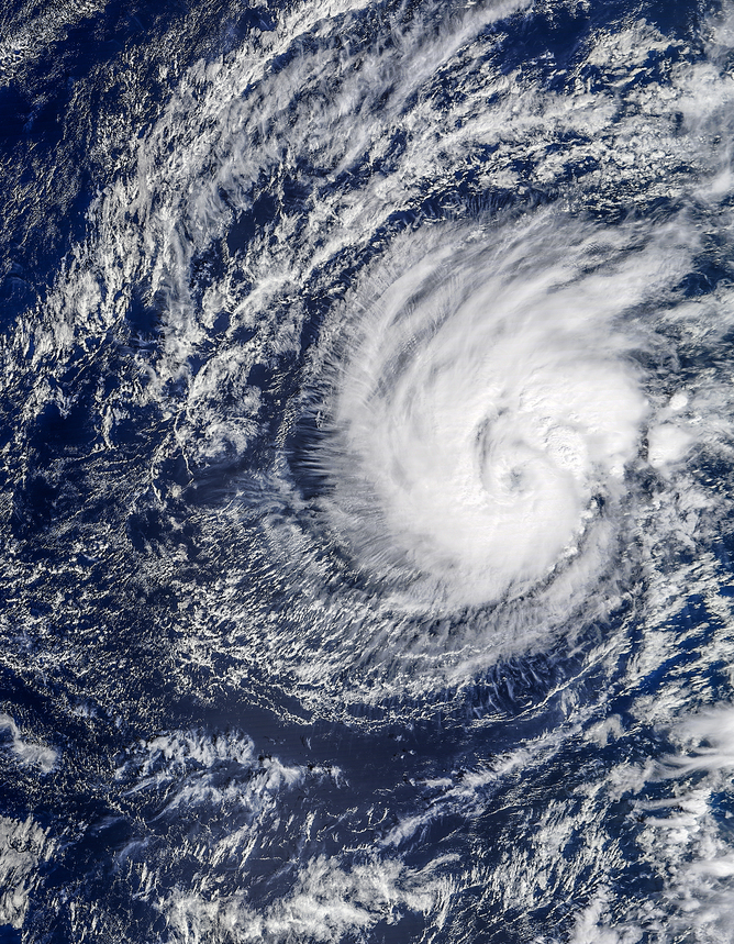Hurricane Pali churns over the eastern Pacific on January 11 - Image Credit:  NASA Earth Observatory