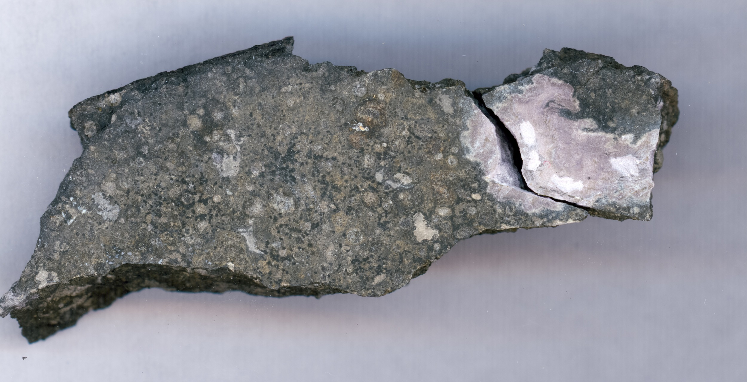 This close-up picture shows a ceramic-like refractory inclusion (pink inclusion) still embedded into the meteorite in which it was found. Refractory inclusions are the oldest-known rocks in the solar system (4.5 billion years old). Analysis of the uranium isotope ratios of such inclusions demonstrates that a long-lived isotope of the radioactive element curium was present in the solar system when this inclusion was formed. The inclusion measures 1.5 centimers (.59 inches) in length. - Image Credit:Origins Lab, University of Chicago