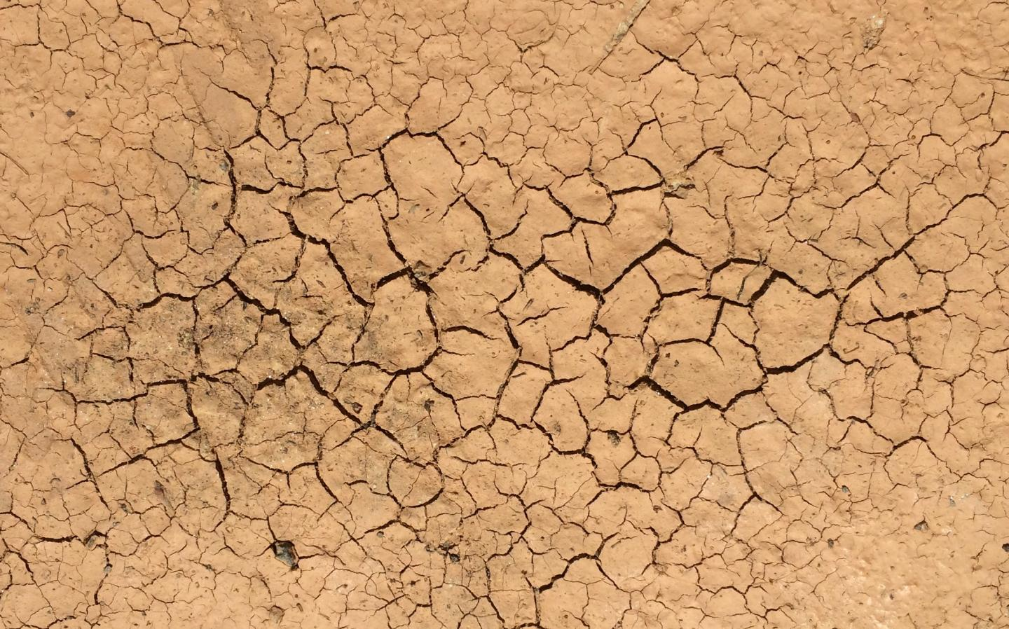 As a volume of mud dries, its internal tension grows until it suddenly cracks hierarchically, meaning with a few large cracks along with many small ones. A similar process is responsible for the wide variety of sizes that celestial bodies come in, according to a Duke professor. – Image Credit: Adrian Bejan, Duke University