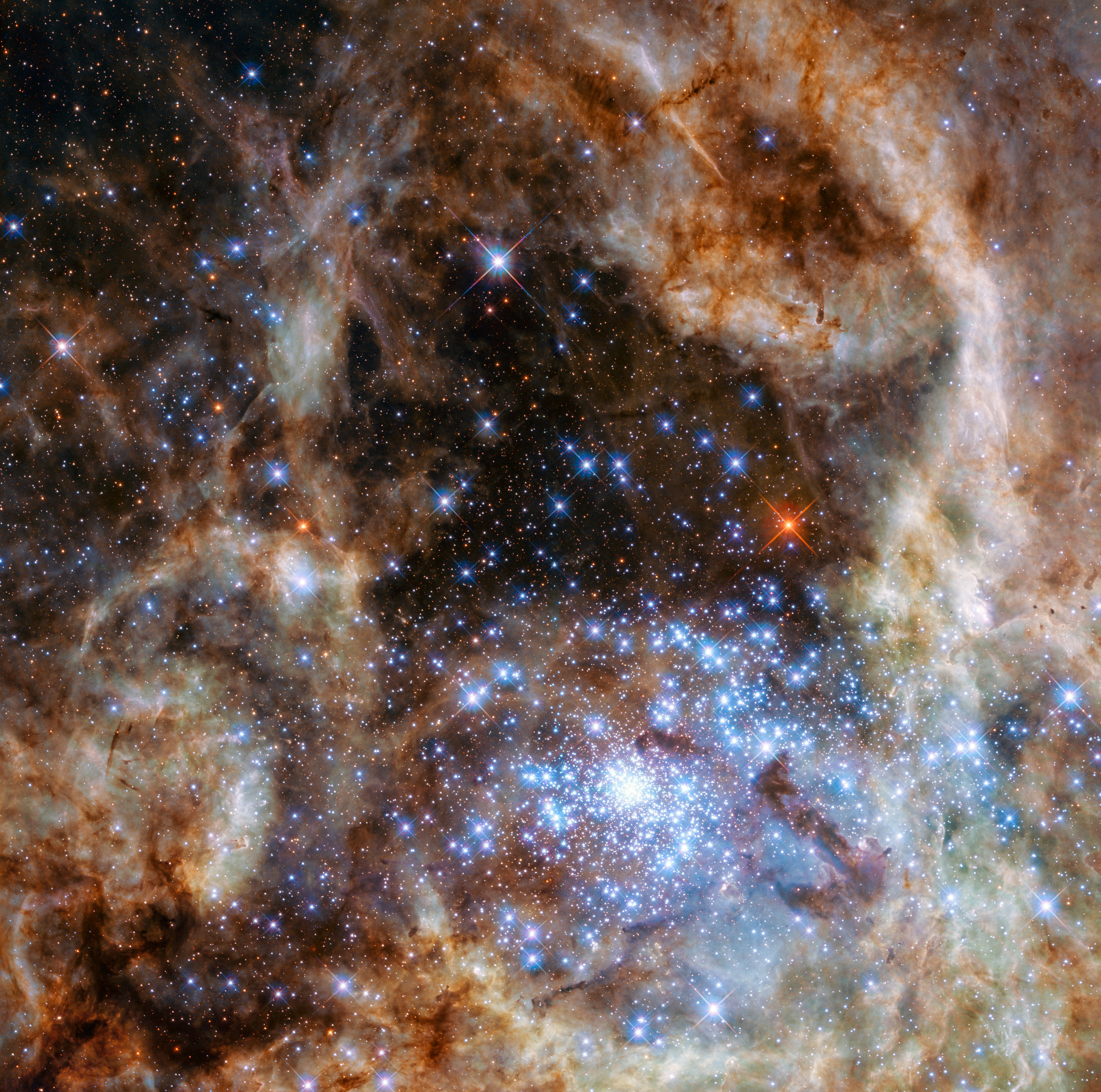 This Hubble image shows the central region of the Tarantula Nebula in the Large Magellanic Cloud. The young and dense star cluster R136 can be seen at the lower right of the image. This cluster contains hundreds of young blue stars, among them the most massive star detected in the universe so far. - Image   Credits: NASA, ESA, P Crowther (University of Sheffield)