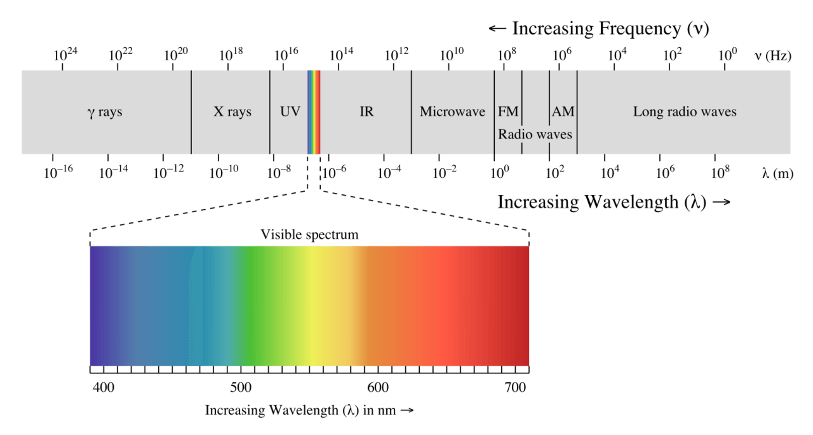 The electromagnetic spectrum, showing all types of light, including the narrow band of visible light. - Image Credit: Philip Ronan , CC BY-SA