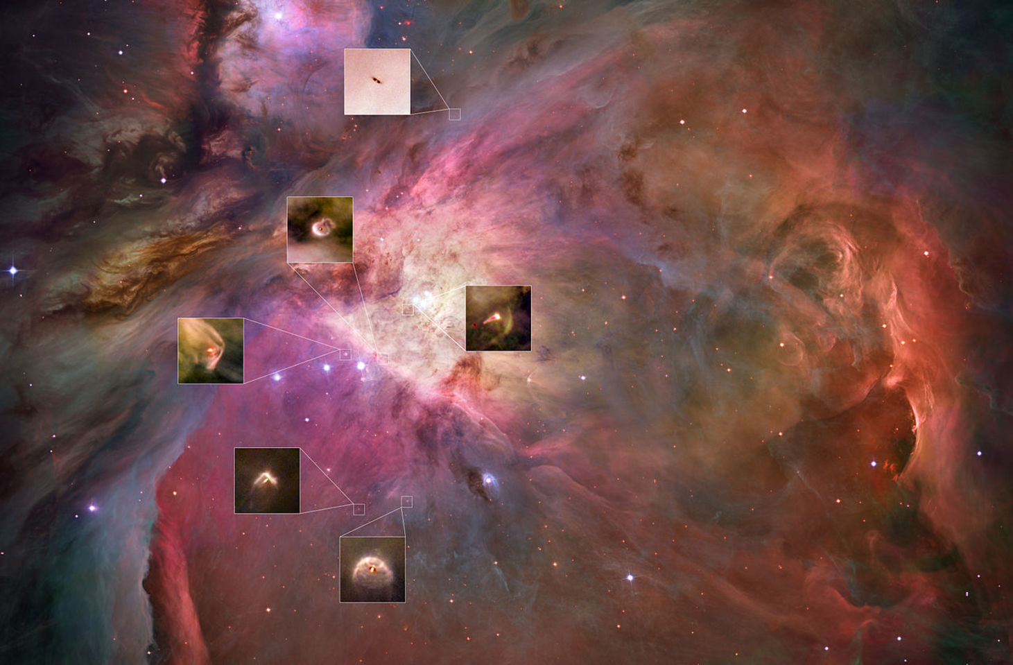 Within each of these circumstellar disks, seen against the backdrop of the Orion nebula, planets are being born. - Image Credit: NASA, ESA, M. Robberto (STSI/ESA), the HST Orion Treasury Project Team and L. Ricci (ESO)