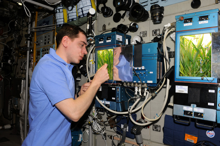 Learning to grow. – Image Credit: NASA