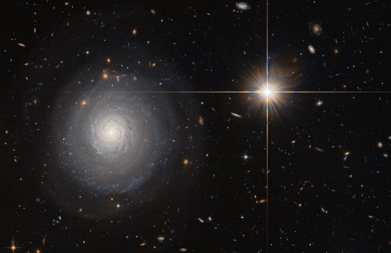 Image Credit: ESA/Hubble/NASA and N. Grogin (STScl)
