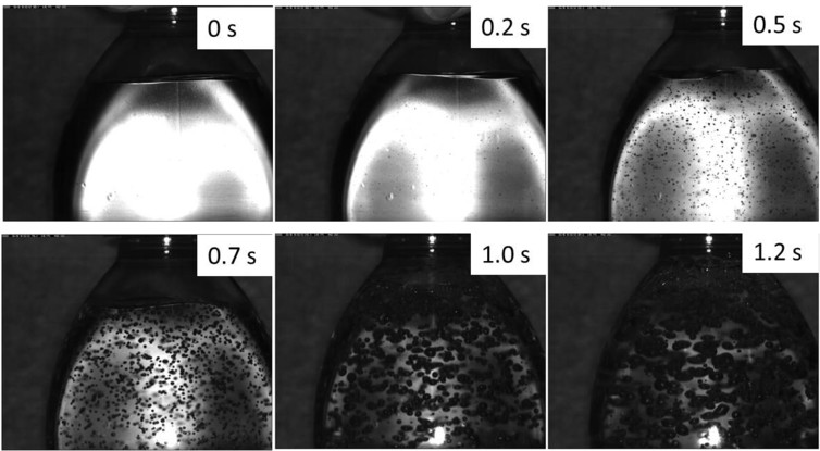Figure 1: the bubble formation upon opening a bottle of sparkling water. Images captured specifically for this article - Author provided