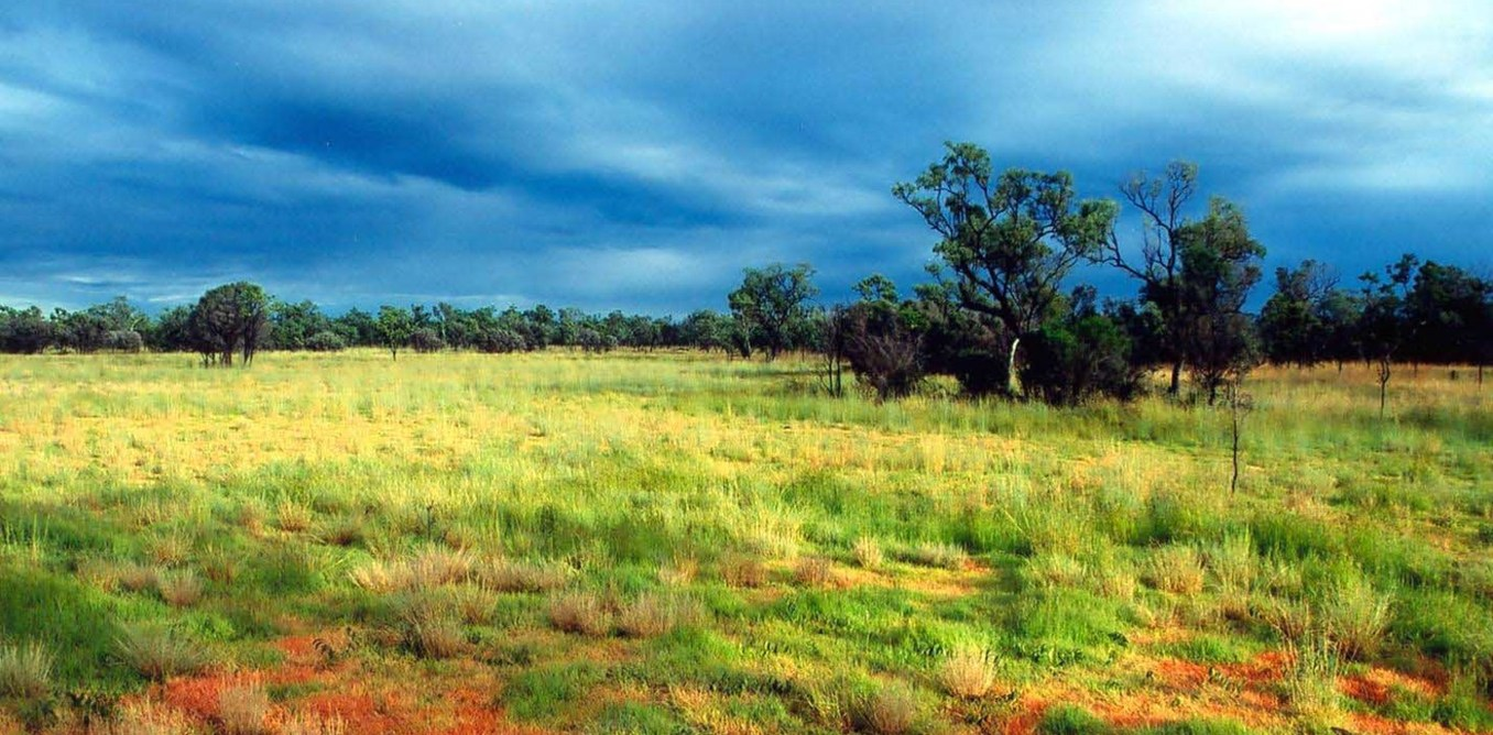 Storm season in the Australian tropical savanna. Euan Ritchie, Author provided