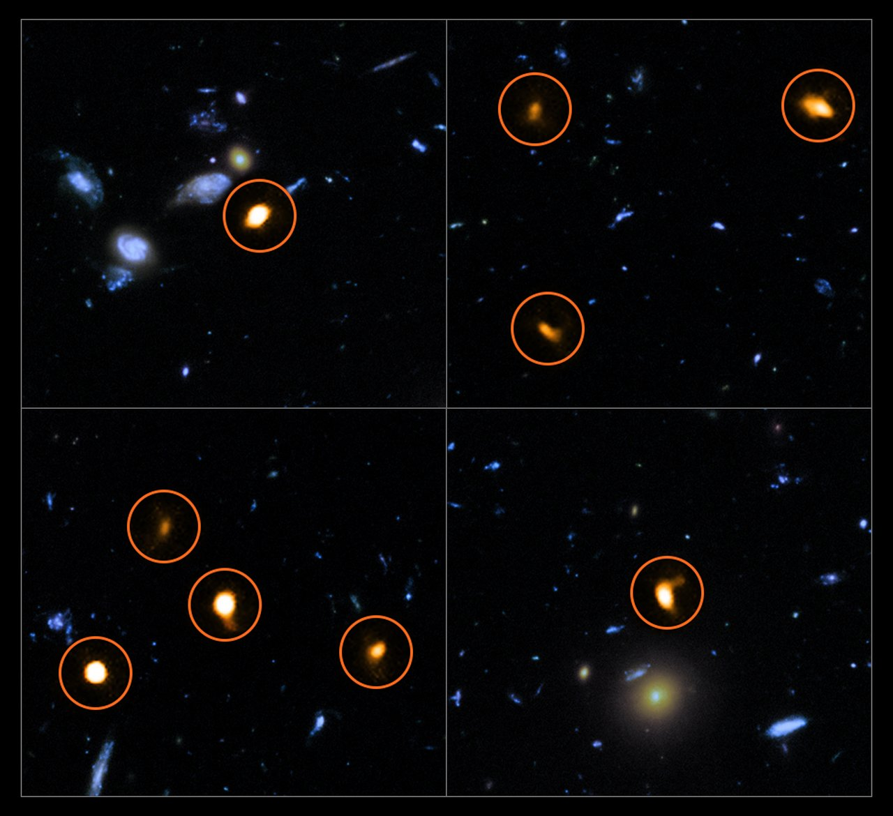 These cutout images are from a combination of a background picture taken by the NASA/ESA Hubble Space Telescope (blue/green) with a new very deep ALMA view of the field (orange, marked with circles). All the objects that ALMA sees appear to be massive star-forming galaxies. – Image Credit:   ALMA (ESO/NAOJ/NRAO)/NASA/ESA/J. Dunlop et al.and S. Beckwith (   STScI   ) and the HUDF Team.