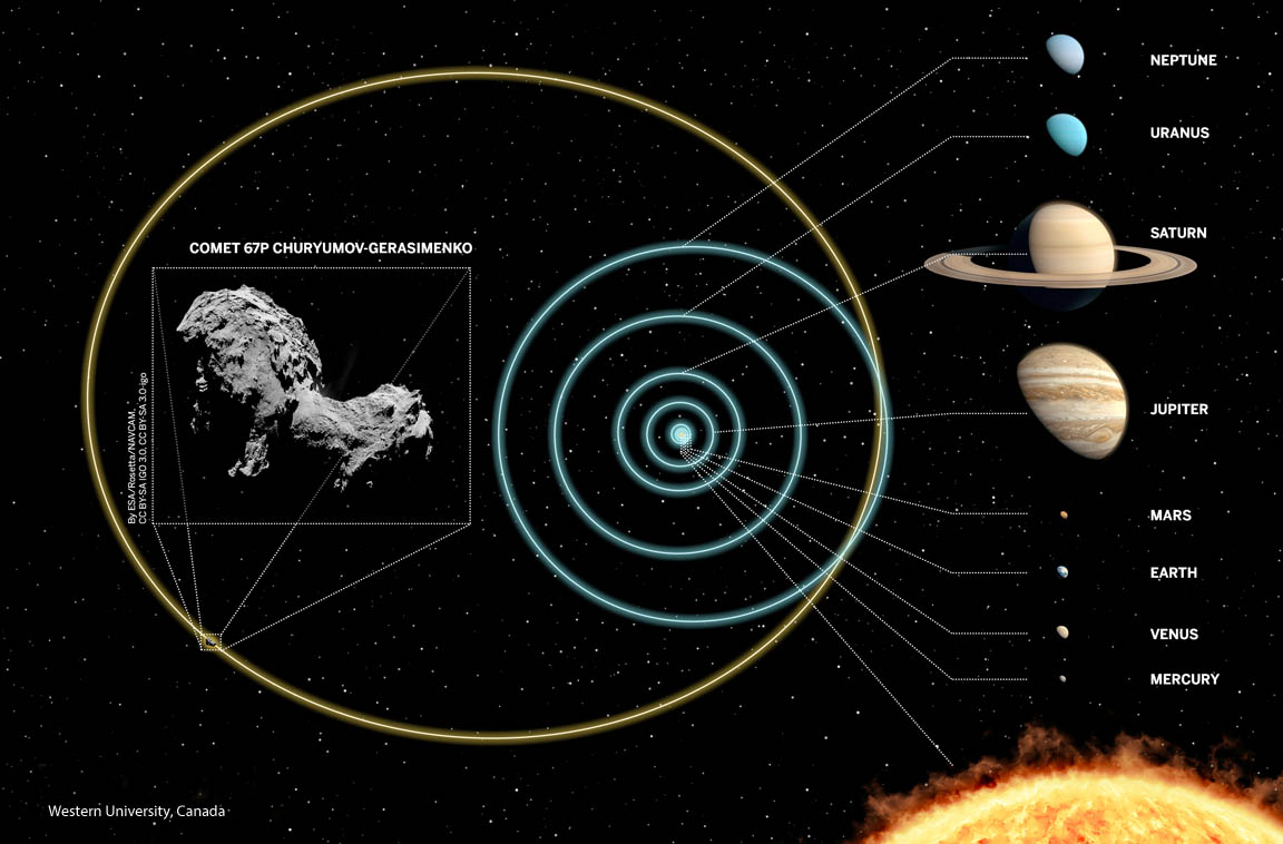 In the distant past, the orbit of 67P/Churyumov-Gerasimenko extended far beyond Neptune into the refrigerated Kuiper Belt. Interactions with the gravitational giant Jupiter altered the comet's orbit over time, dragging it into the inner Solar System. - Image Credit: Western University, Canada