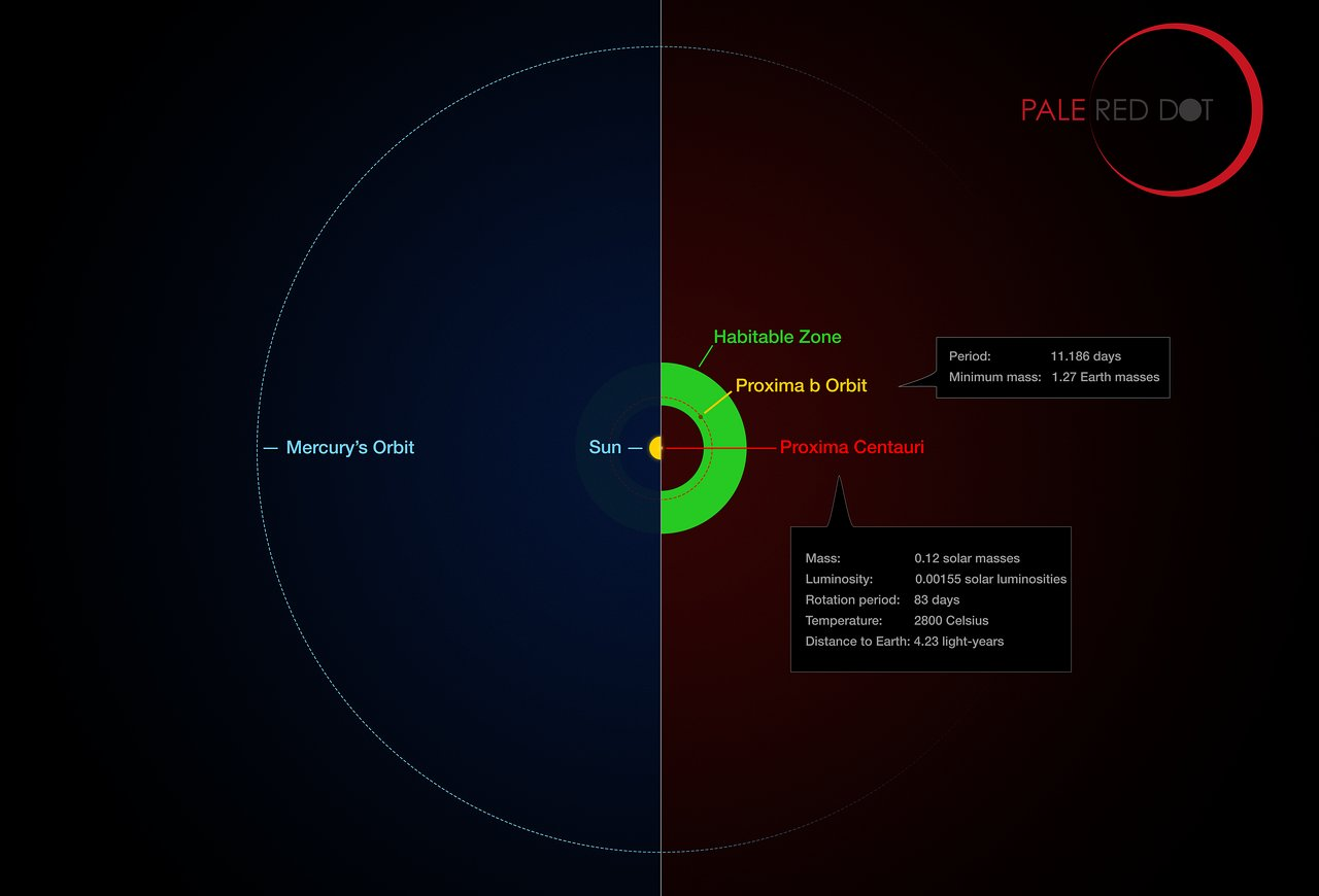 Infographic comparing the orbit of the planet around Proxima Centauri (Proxima b) with the same region of the Solar System. Credit: ESO