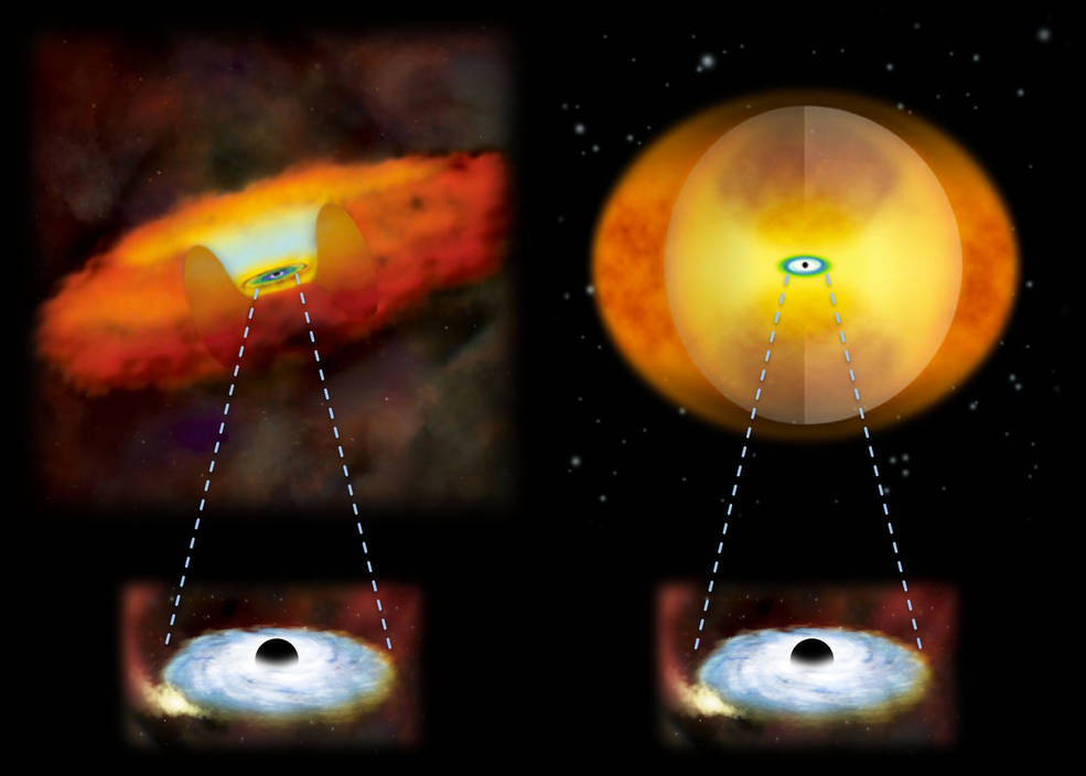 This illustration compares growing supermassive black holes in two different kinds of galaxies. A growing supermassive black hole in a normal galaxy would have a donut-shaped structure of gas and dust around it (left). In a merging galaxy, a sphere of material obscures the black hole (right). - Image Credits: National Astronomical Observatory of Japan