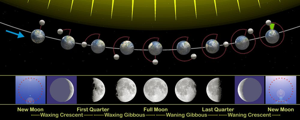 The phases of the moon visible from Earth are related to its revolution around our planet. - Image Credit: Orion 8 , CC BY-SA