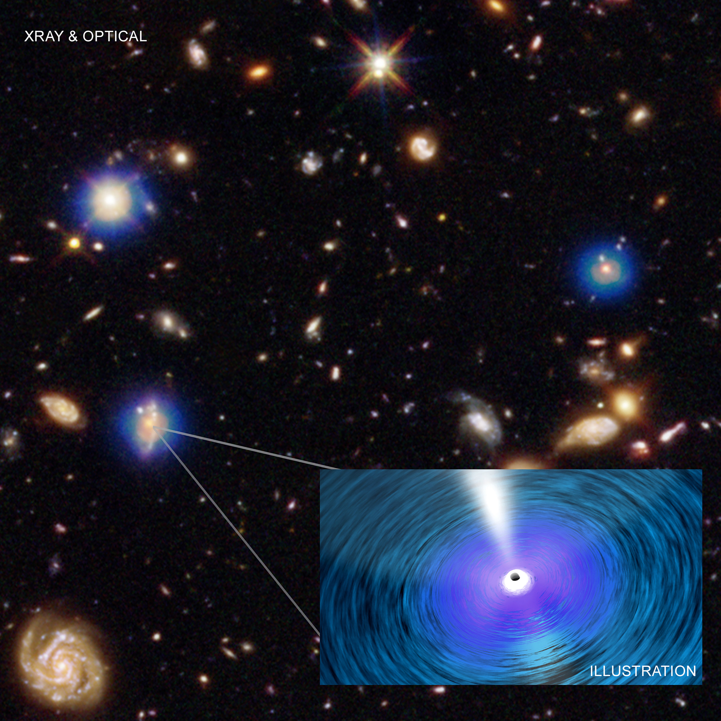 In this graphic an image from the Chandra Deep Field-South is shown. The Chandra image (blue) is the deepest ever obtained in X-rays. It has been combined with an optical and infrared image from the Hubble Space Telescope (HST), colored red, green, and blue. Each Chandra source is produced by hot gas falling towards a supermassive black hole in the center of the host galaxy, as depicted in the artist's illustration. - Image Credits: NASA/CXC/Penn. State/G. Yang et al and NASA/CXC/ICE/M. Mezcua et al.; Optical: NASA/STScI; Illustration: NASA/CXC/A. Jubett