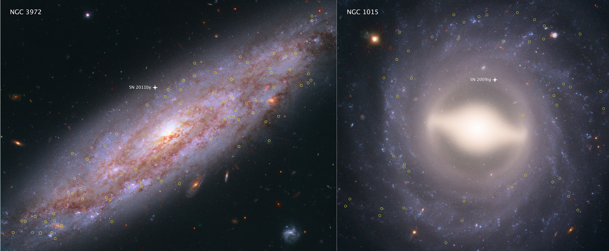 These Hubble Space Telescope images showcase two of the 19 galaxies analyzed in a project to improve the precision of the universe's expansion rate, a value known as the Hubble constant. The color-composite images show NGC 3972 (left) and NGC 1015 (right), located 65 million light-years and 118 million light-years, respectively, from Earth. The yellow circles in each galaxy represent the locations of pulsating stars called Cepheid variables. - Image Credits: NASA, ESA, A. Riess (STScI/JHU)