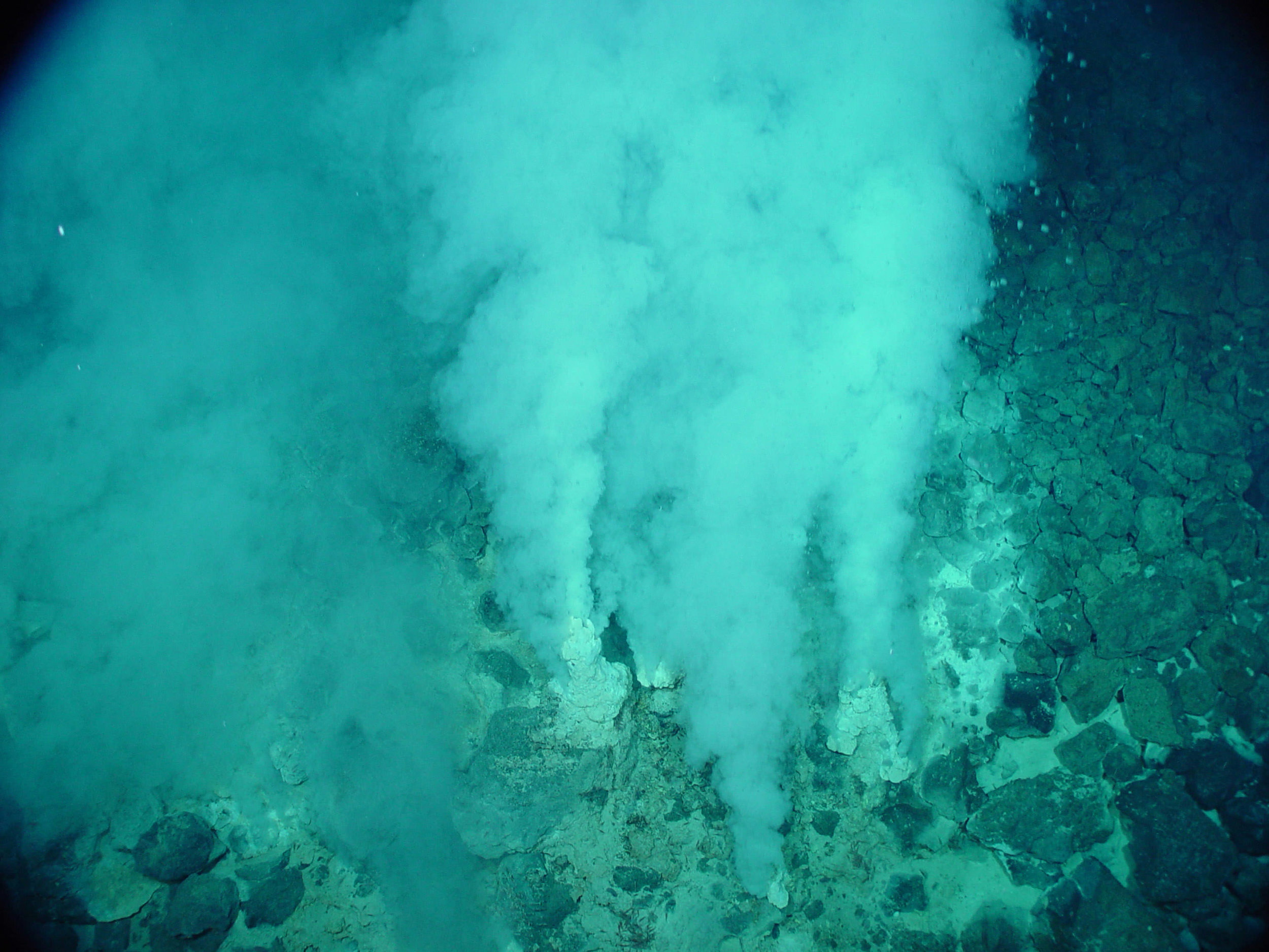 Hydrothermal vents on Earth's ocean floor. Credit: NOAA
