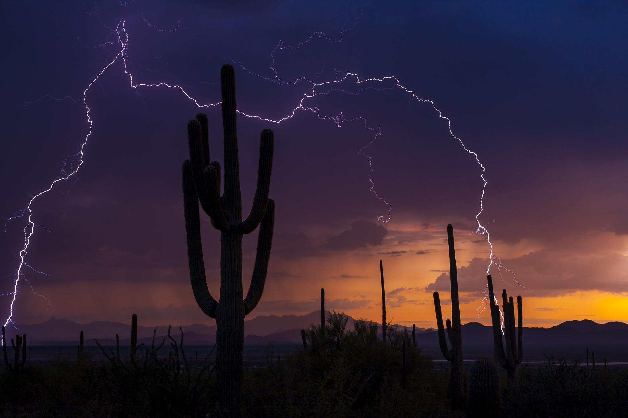 Image Credit:  Pete Gregoire/NOAA Photo LIbrary via flickr
