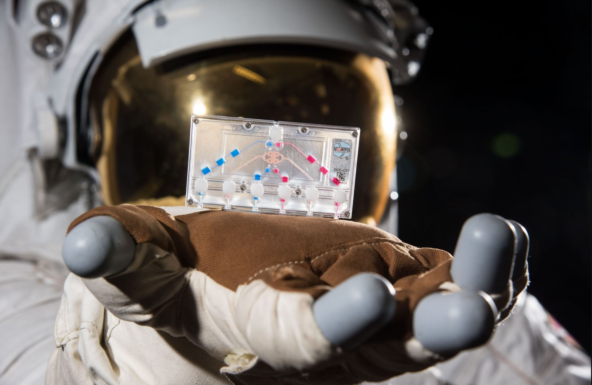 Made of flexible plastic, tissue chips have ports and channels to provide nutrients and oxygen to the cells inside them. - Image Credit: NASA