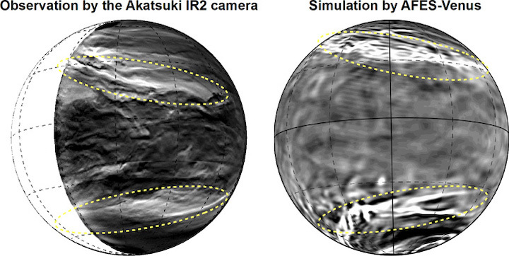 (Left) The lower clouds of Venus observed with the Akatsuki IR2 camera. The bright parts show where the cloud cover is thin. You can see the planetary-scale streak structure within the yellow dotted lines. (Right) The planetary-scale streak structure reconstructed by AFES-Venus simulations. The bright parts show a strong downflow. (Partial editing of image in the Nature Communications paper.  CC BY 4.0 )