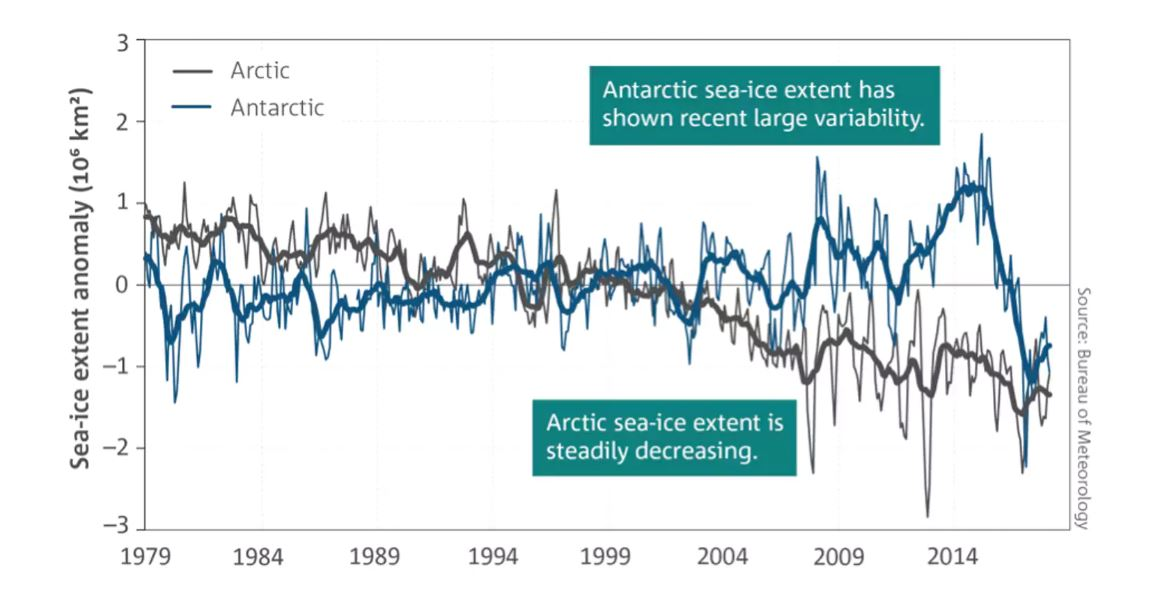 Antarctic and Arctic sea ice cover (shown as the net anomaly from the 1981–2010 average) for January 1979 to May 2018. Thin lines are monthly averages and indicate the variability at shorter time-scales. Thick lines are 11-month running averages.Bureau of Meteorology,Author provided