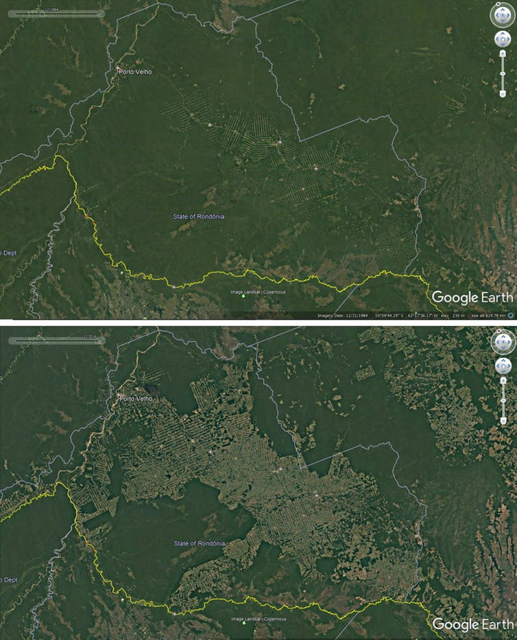 Deforestation around roads in Rondonia, Brazil, 1984-2016. - Credit: Google Earth