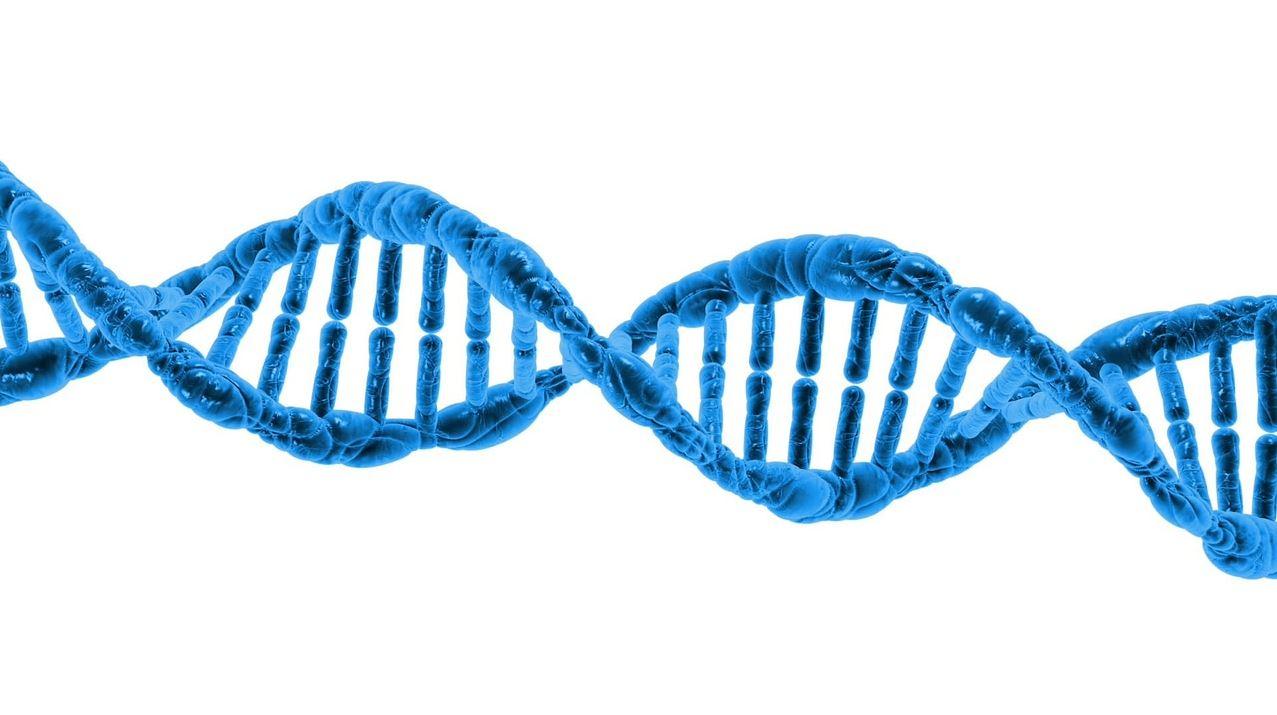 DNA - Image Credit:  PublicDomainPictures via pixabay